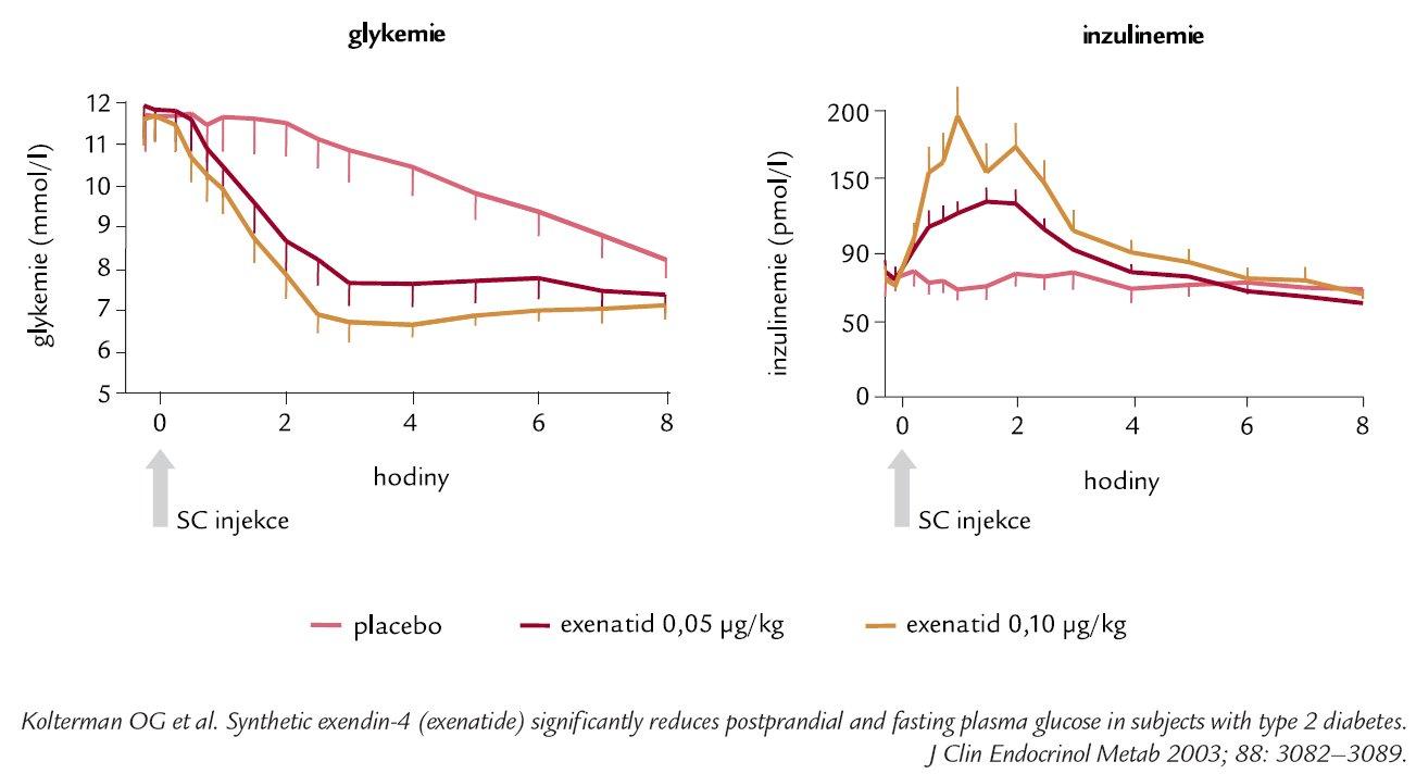 Exenatid zvyšuje hladiny inzulinu a snižuje hyperglykemie u pacientů s DM 2. typu (n = 12).
