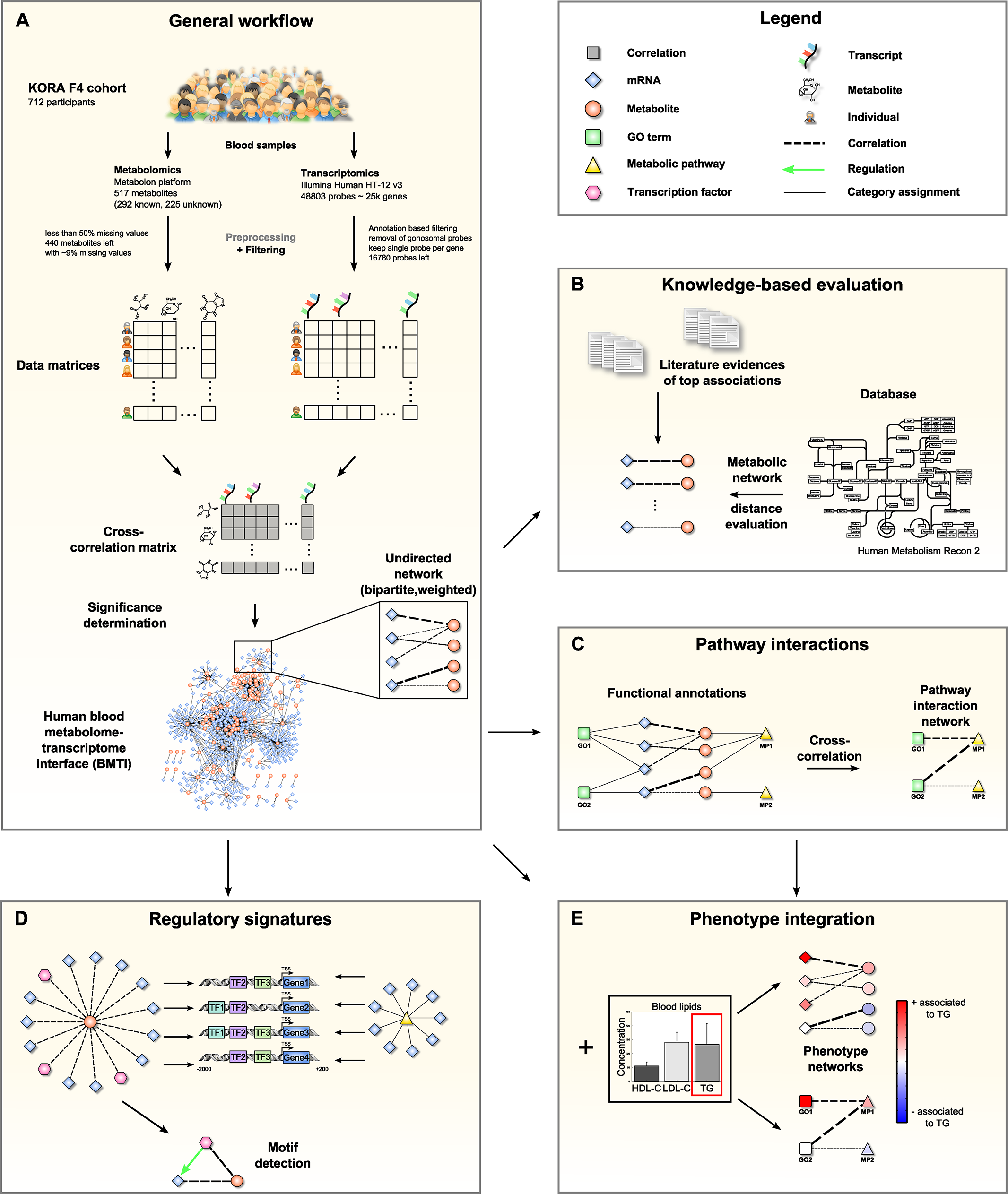 Data integration and network analysis workflow for the blood metabolome-transcriptome interface (BMTI).