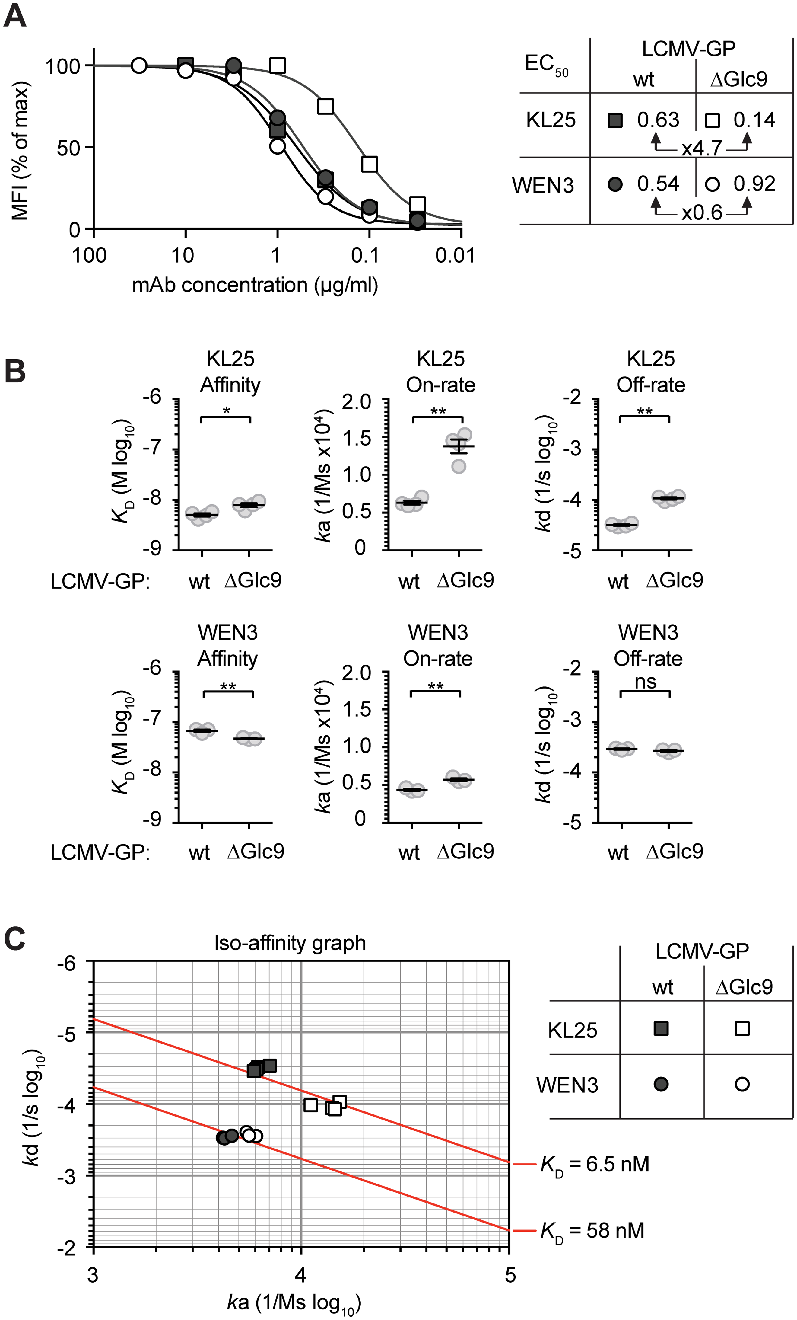 Facilitated binding of neutralizing mAb to Glc9-deficient LCMV-GP-1.