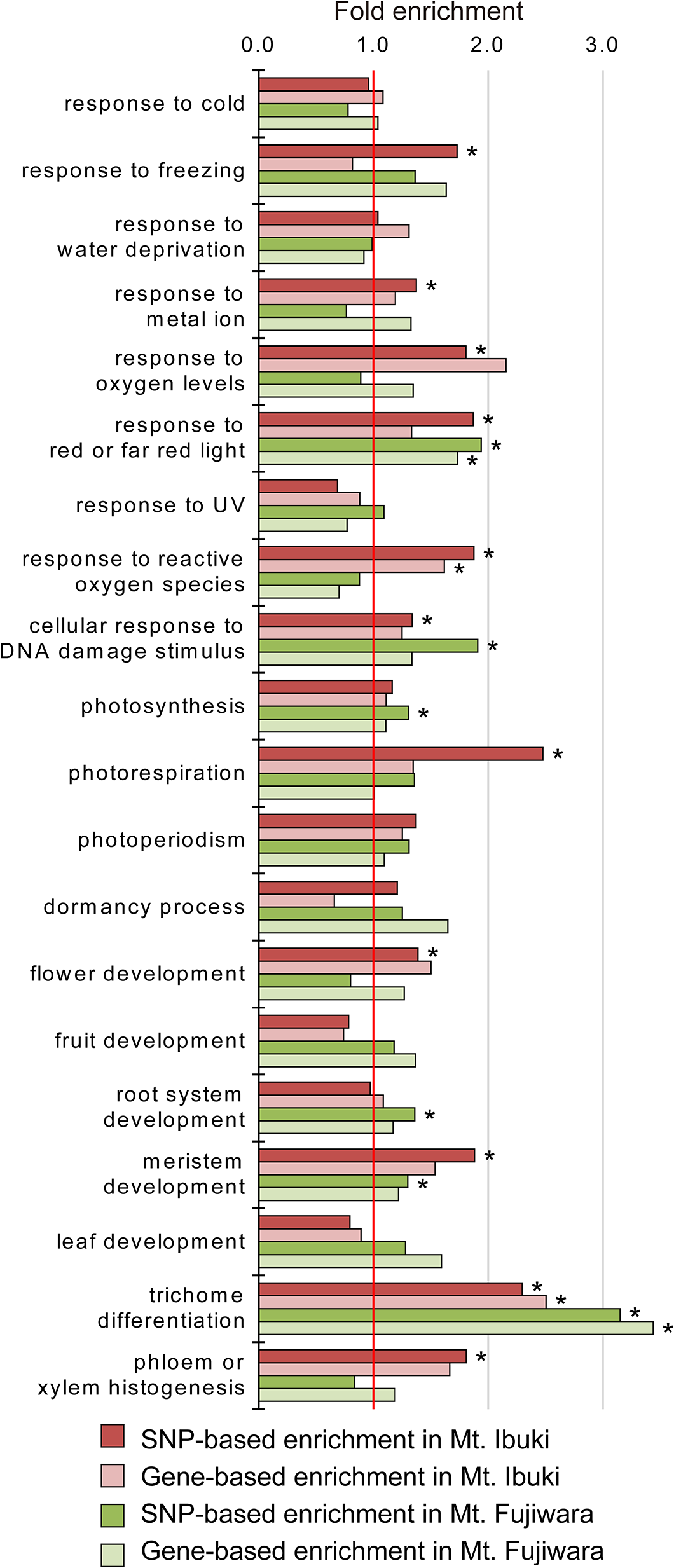 Enrichment analyses of the selected Gene Ontology terms.