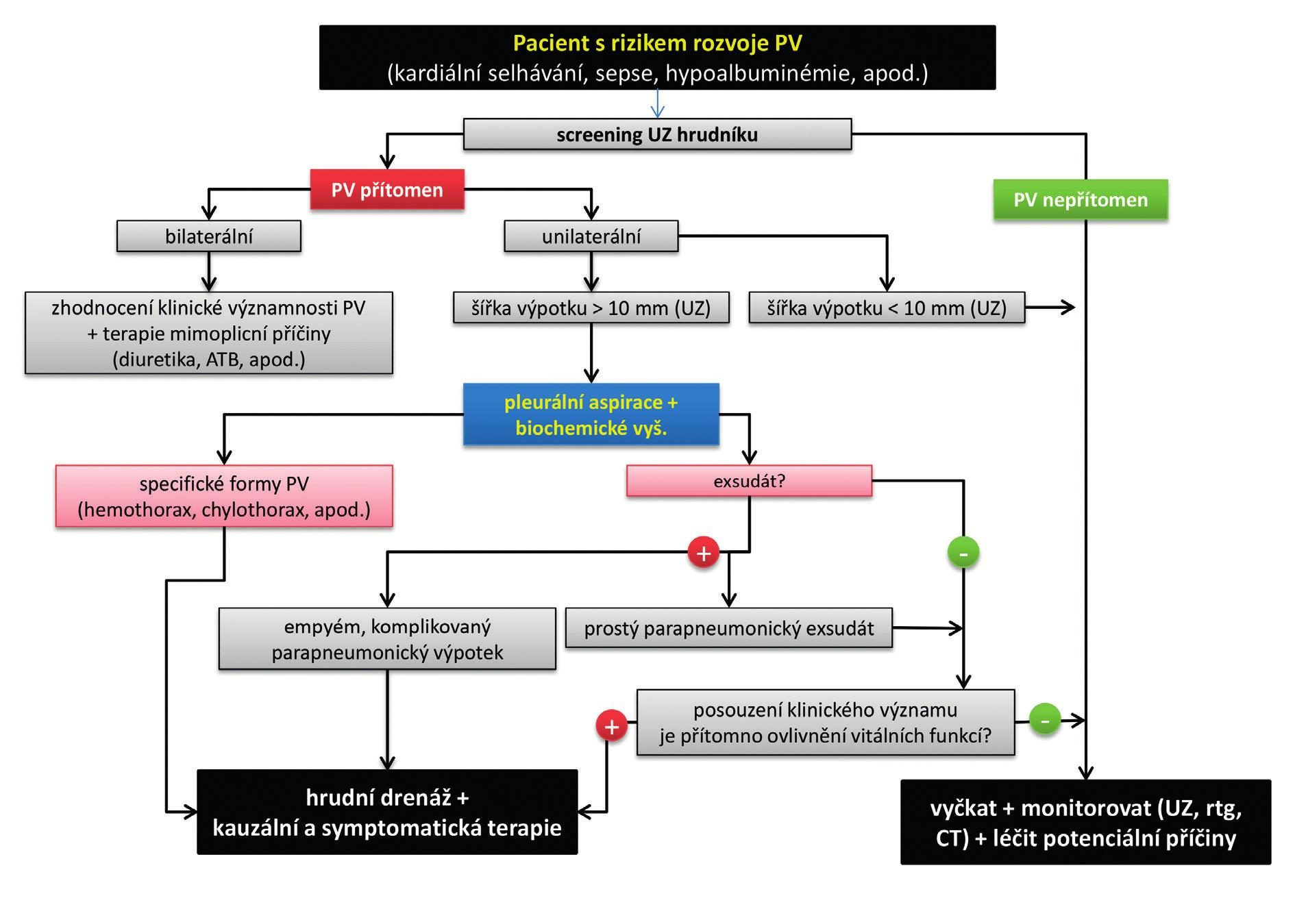 Schéma úvodního diagnosticko-terapeutického algoritmu u pacientů s pleurálním výpotkem  v intenzivní péči