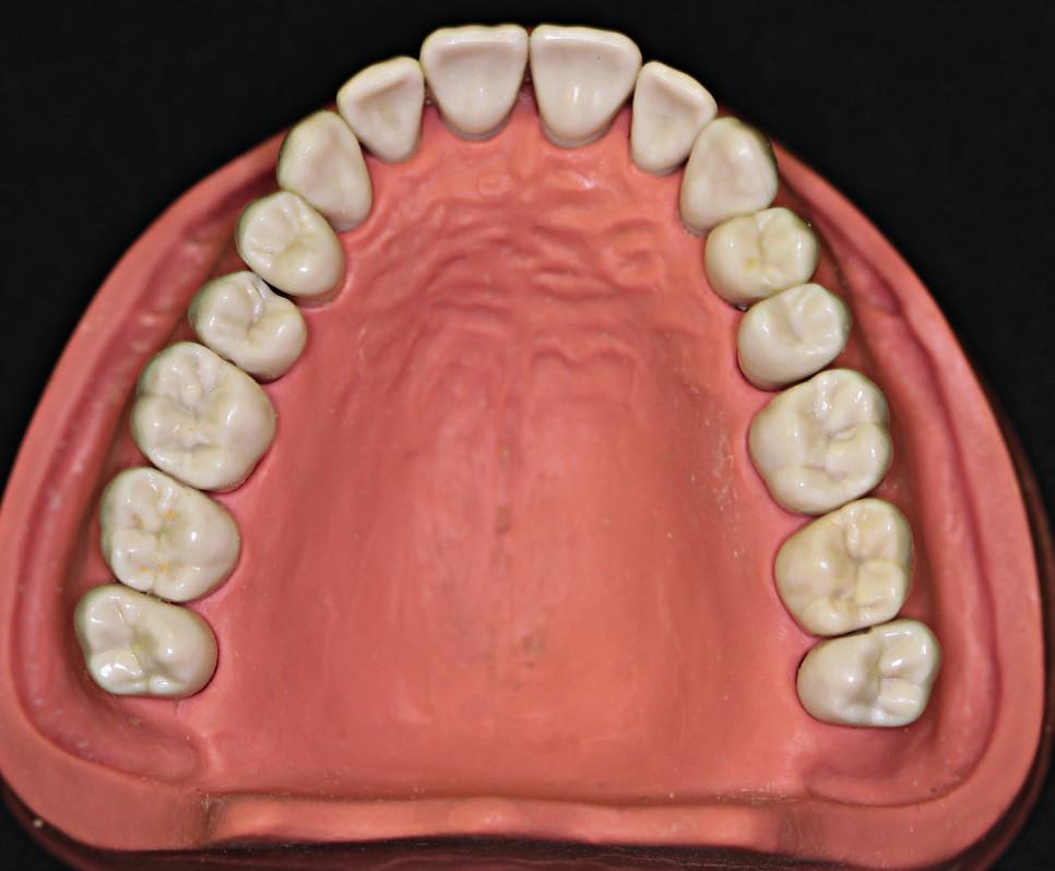 Fantomová čelist a zuby KaVo