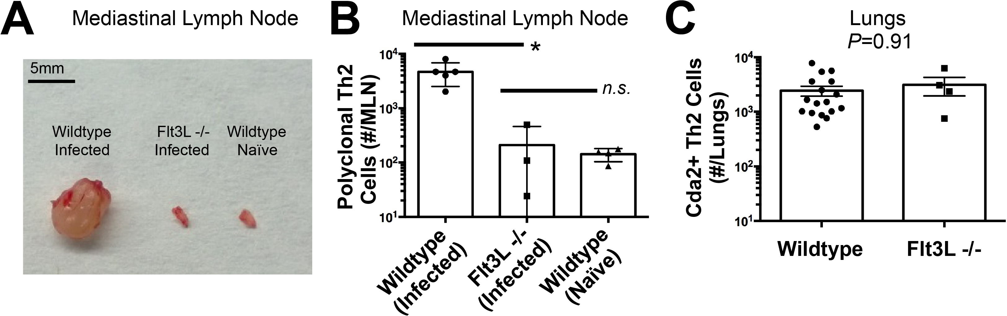 Lymphoid Priming is Dispensible for Pulmonary Th2 Cell Induction during Cryptococcal Infection.