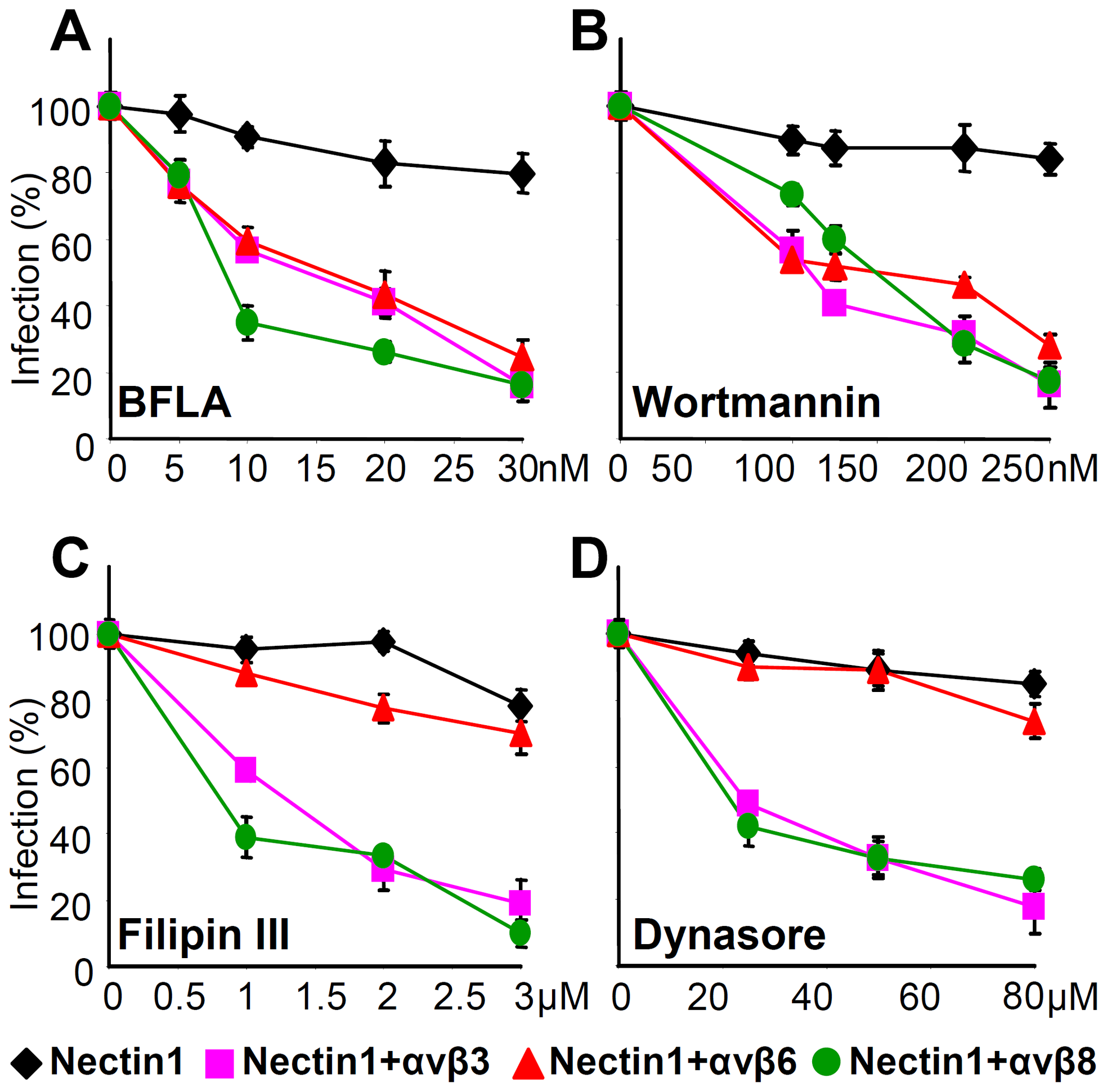 Effect of expression of αvβ6- or αvβ8-integrin on the pathway of HSV entry, defined through sensitivity to specific inhibitors.