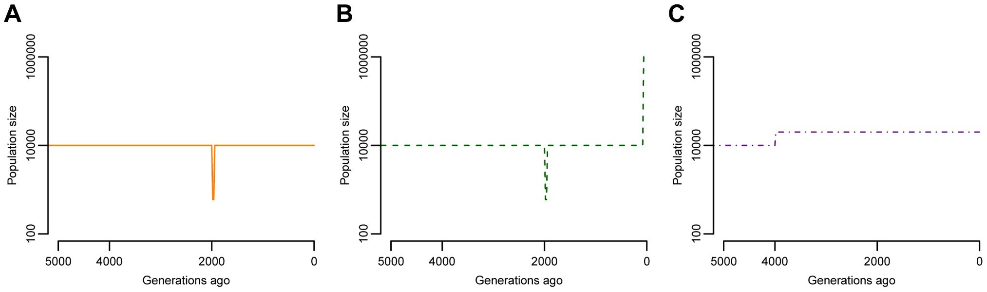 Models of population size changes over time.