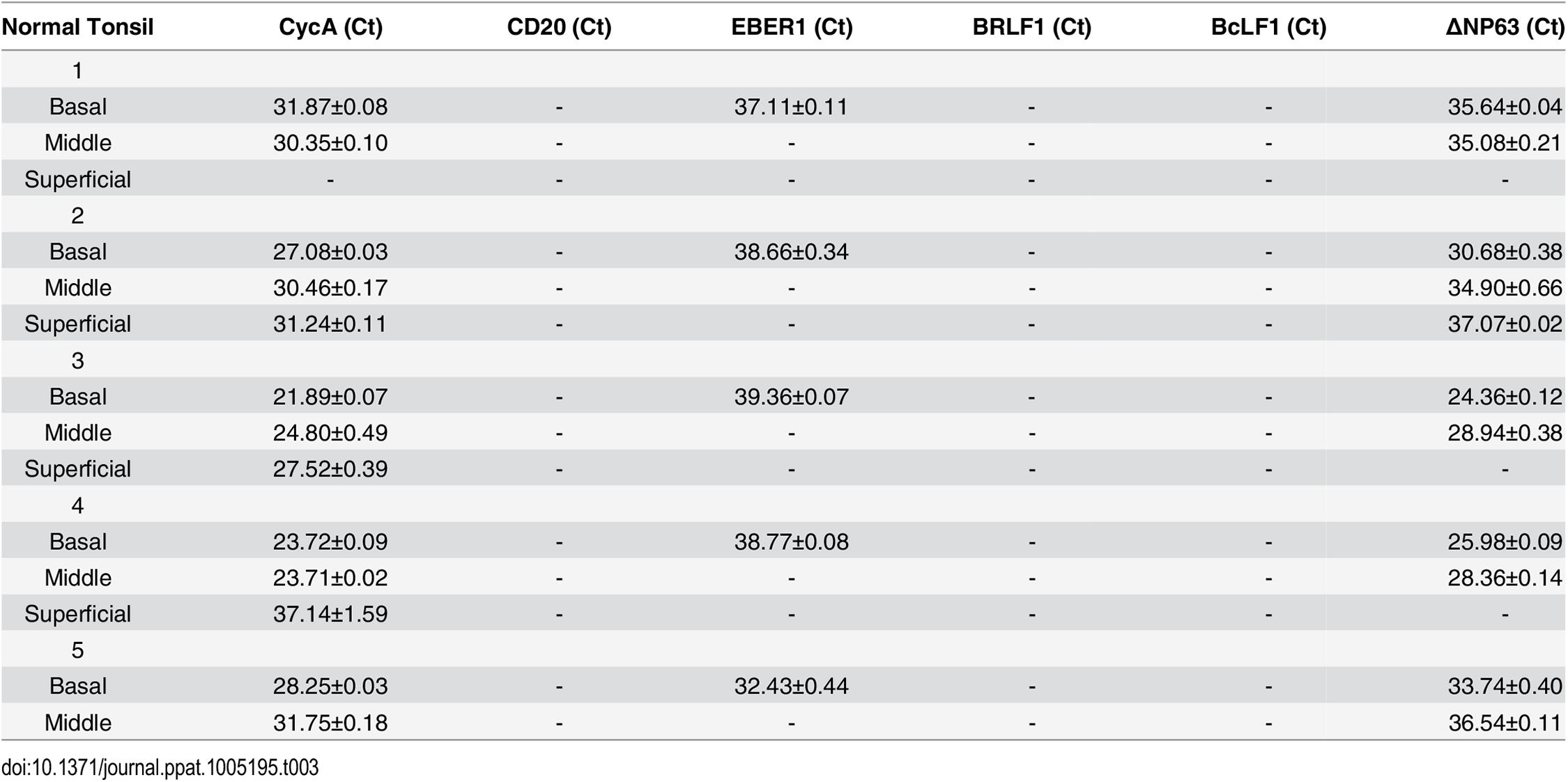 EBV transcripts in normal tonsil tissue.