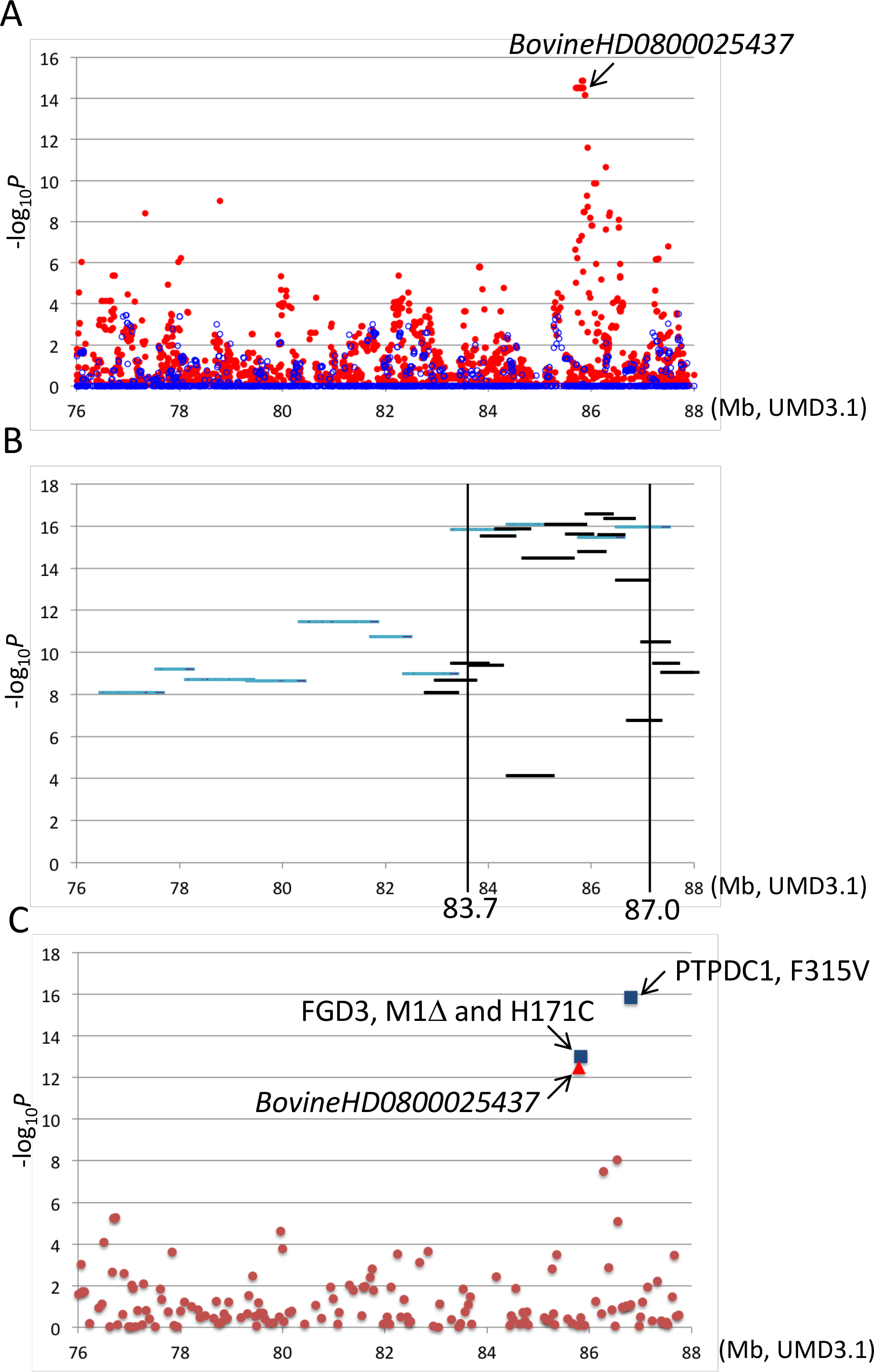 Association analyses using imputed BovineHD genotypes (A), segments of the identical-by-descent (IBD) <i>Q</i> haplotype (B), and candidate causative variations (C).