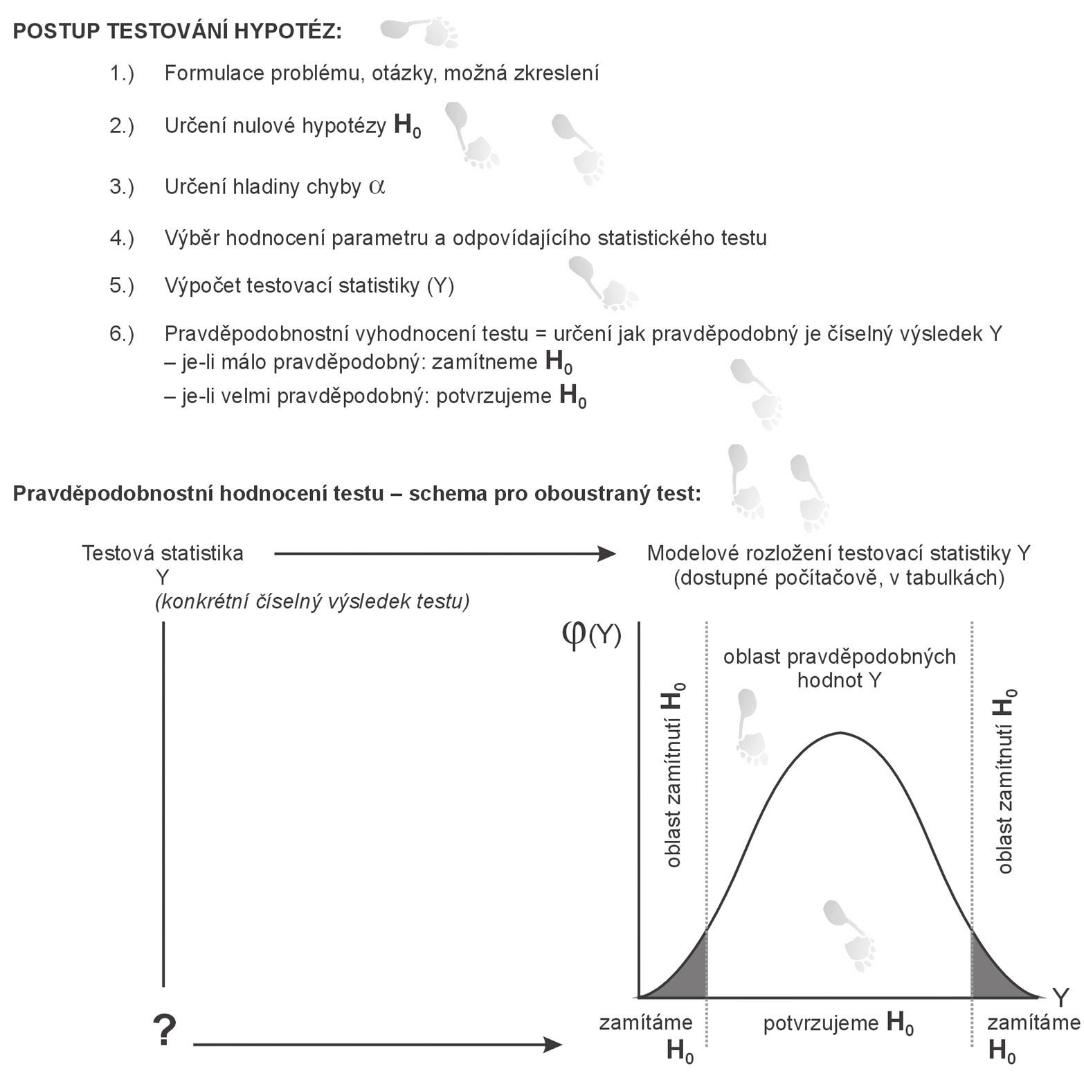 Schéma znázorňující nutné kroky při statistickém testování.