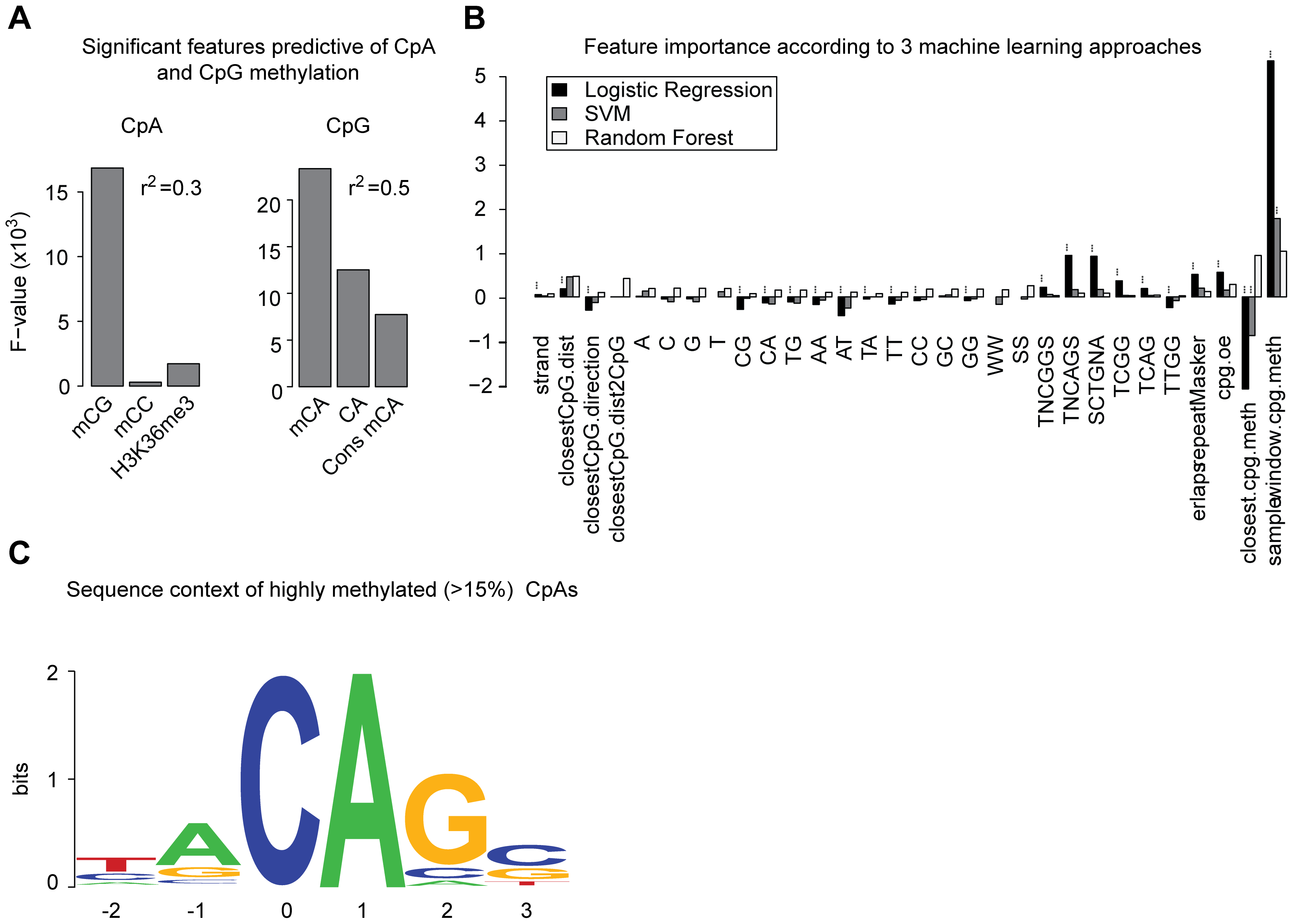 Genomic context and attributes of CpA methylation.