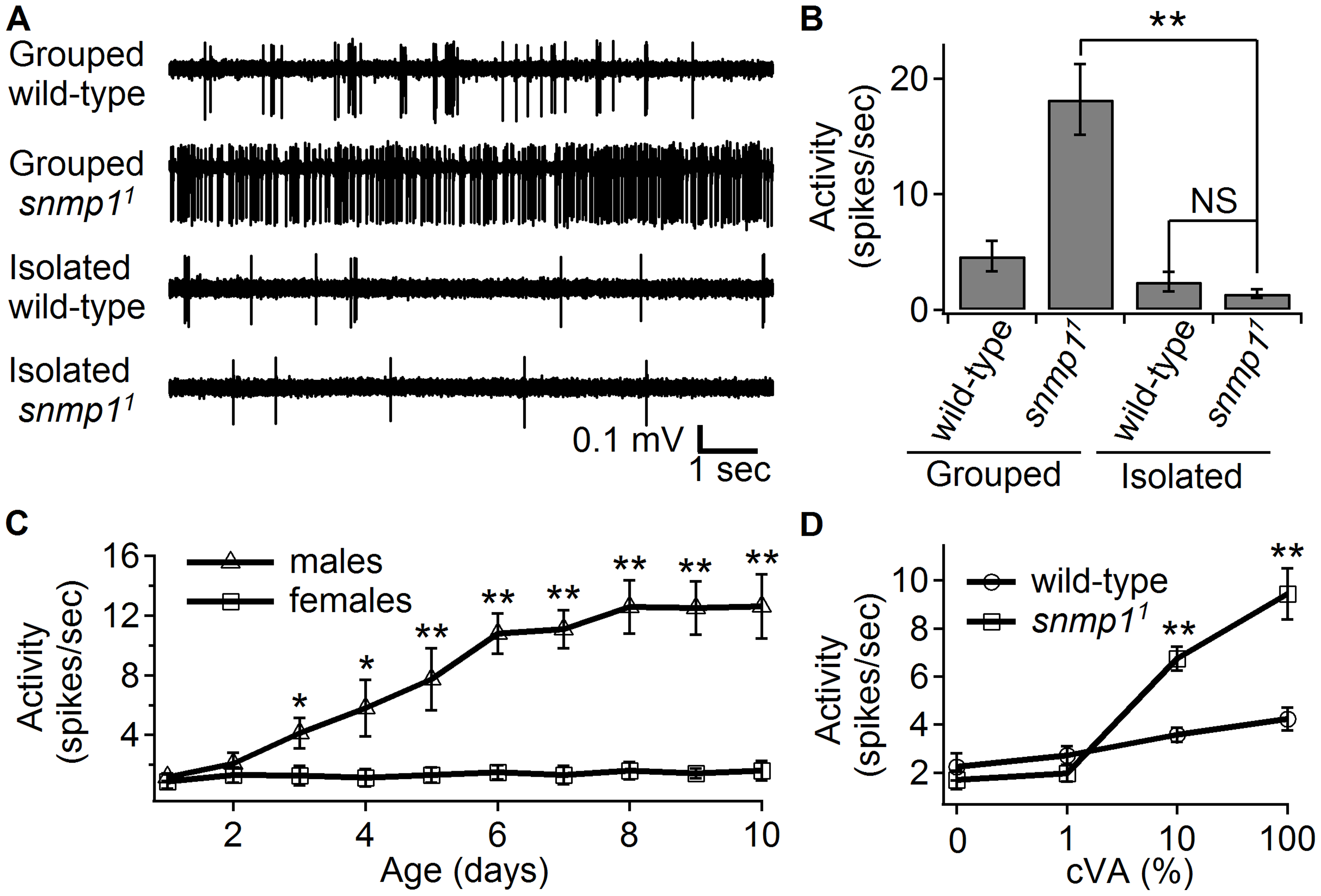 """Effects of prior exposure either to males or to cVA on """"spontaneous"""" spiking activity."""