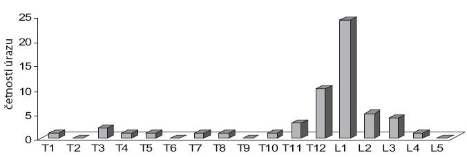 Rozložení souboru pacientů podle úrovně poranění