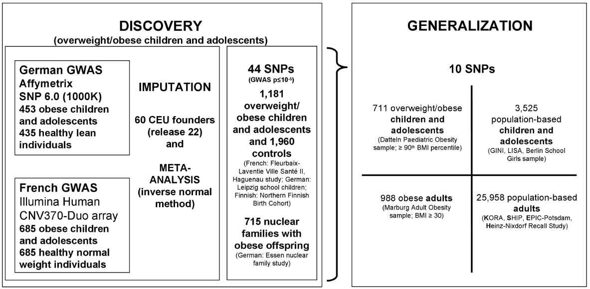 Study design to discover consistently associated genetic loci for (early-onset) obesity.