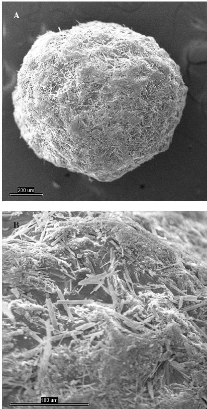 Snímek mikročástice šarže 1 z elektronového mikroskopu A – celá mikročástice, měřítko 200 μm, B – detail povrchu mikročástice, měřítko 100 μm