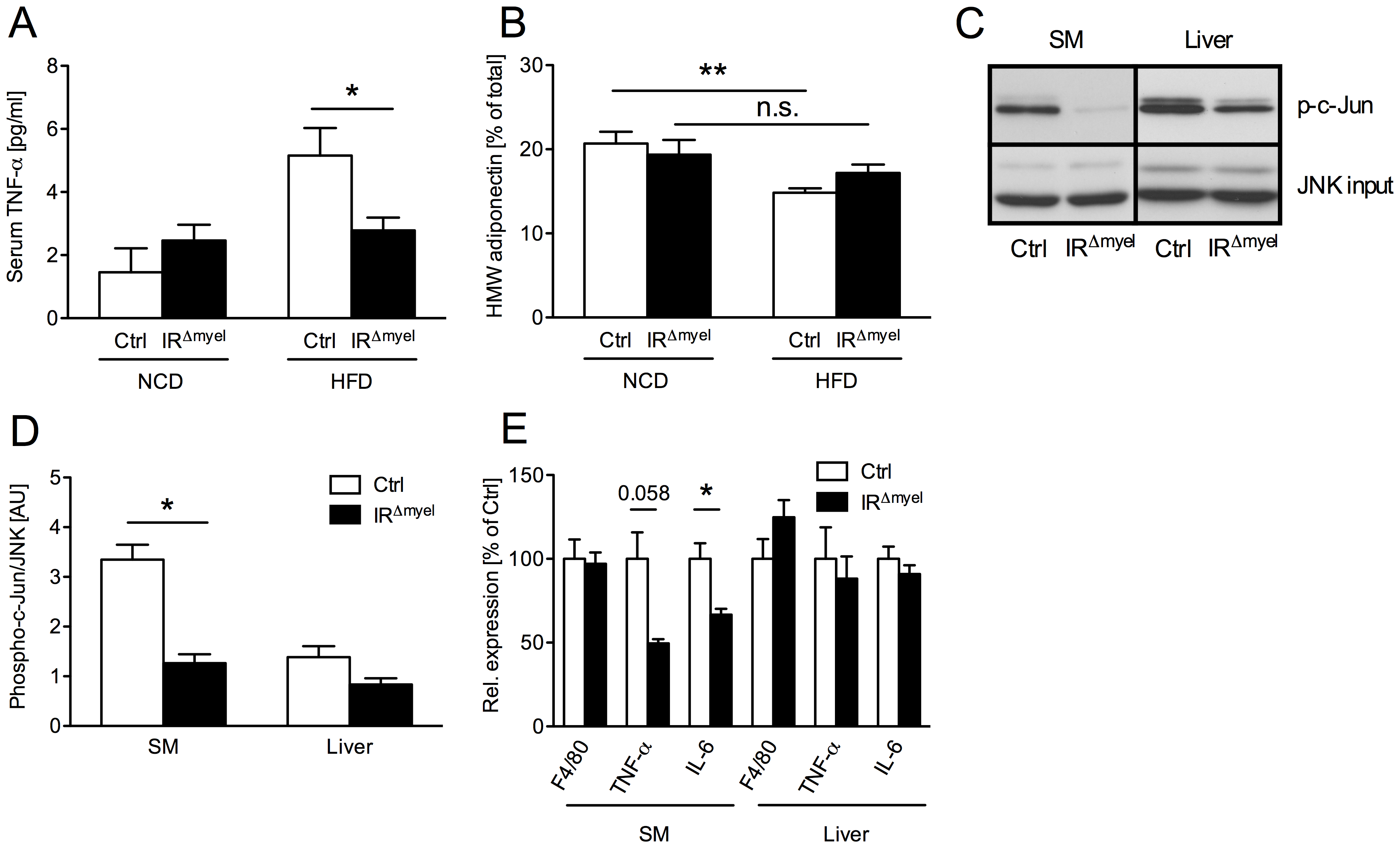 The obesity-associated systemic pro-inflammatory state is reduced in IR<sup>Δmyel</sup>-mice.