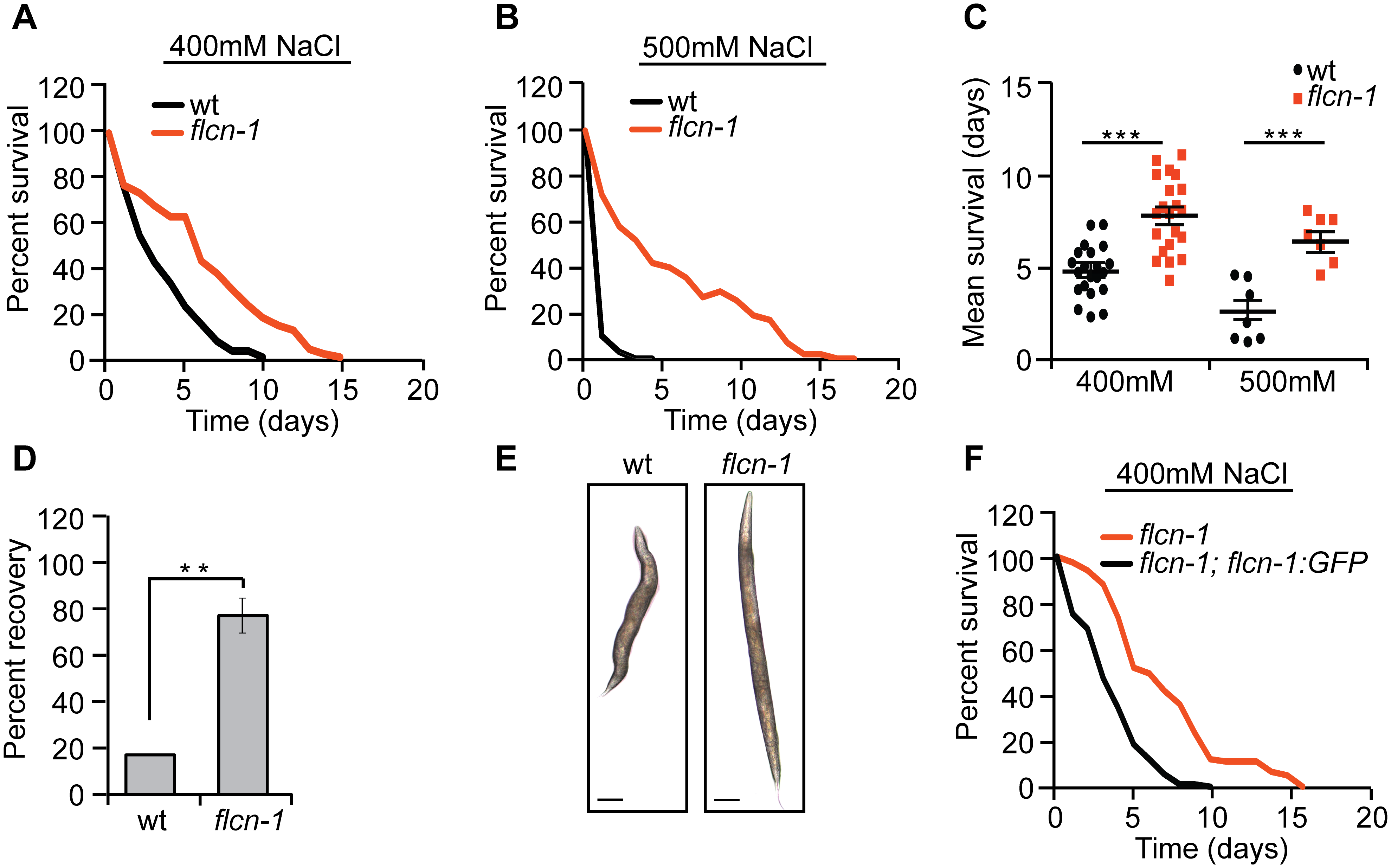 Loss of <i>flcn-1</i> confers resistance to hyperosmotic stress.