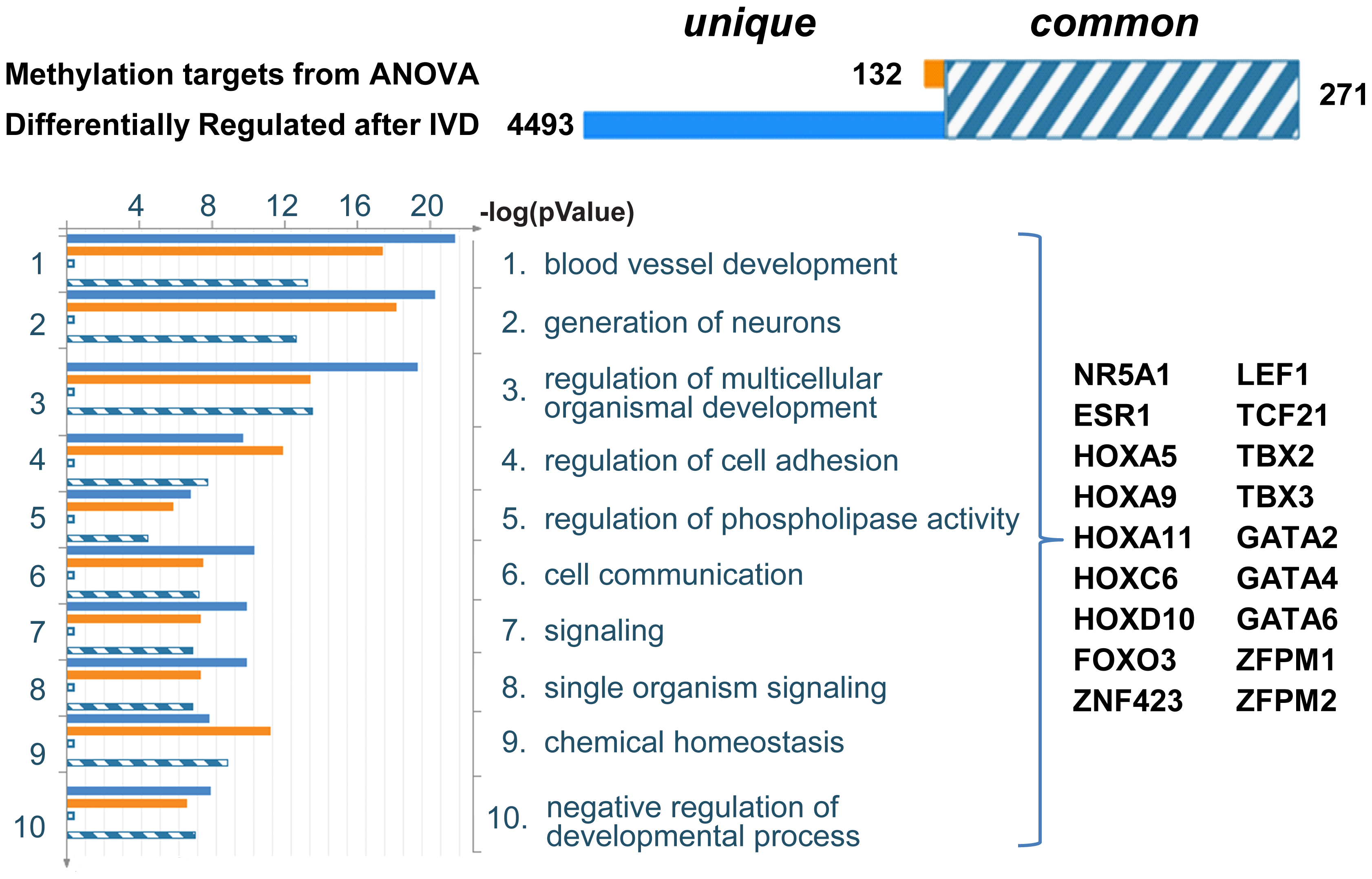 Summary of statistical comparison between ANOVA identified genes and genes differentially expressed after IVD.