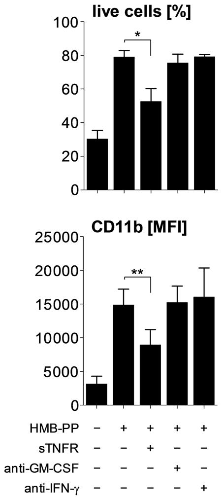HMB-PP stimulated Vγ9/Vδ2 T cells induce neutrophil survival and activation through TNF-α.