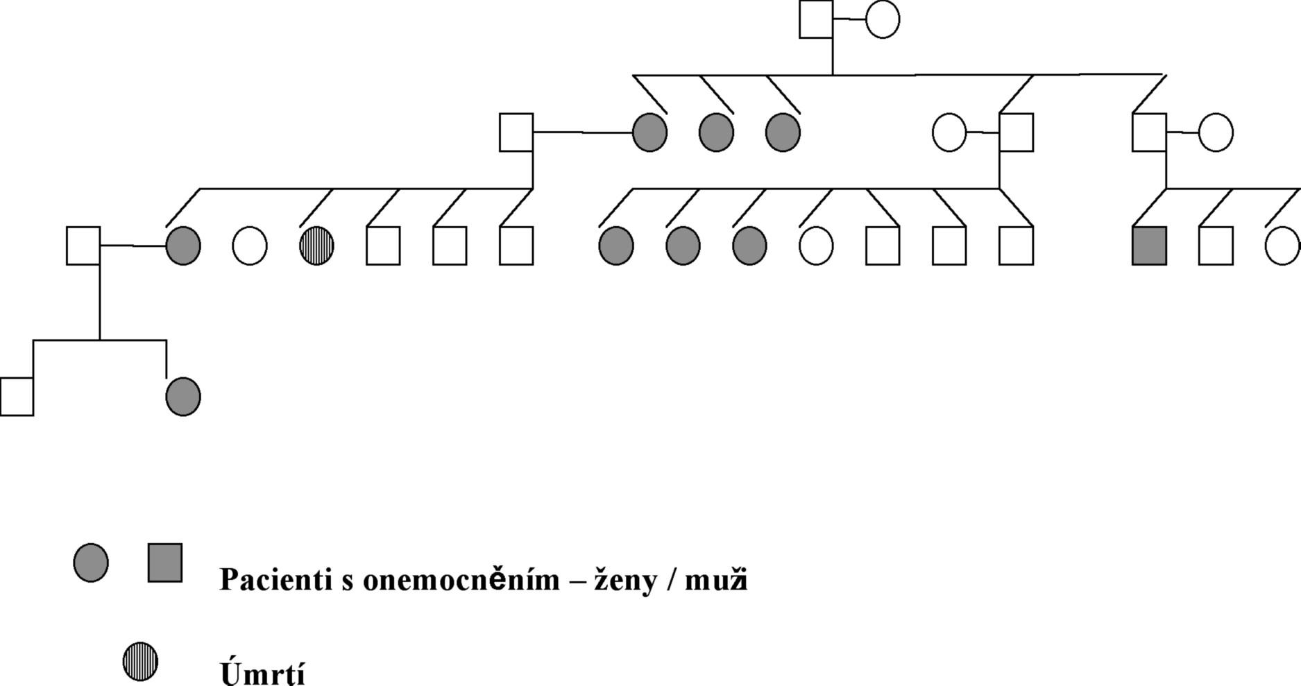 Příklad genealogie jedné rodiny.