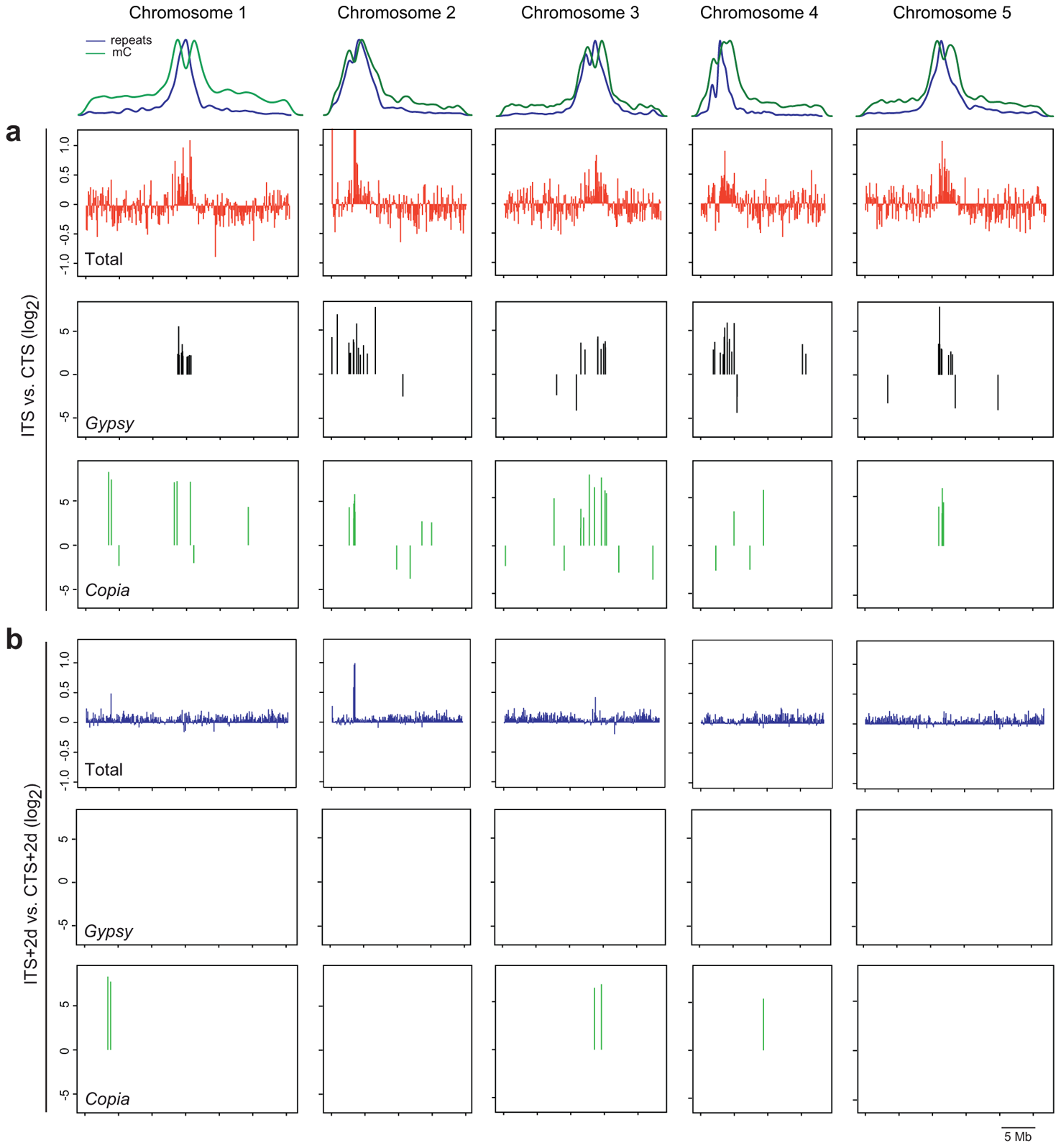 Genome-wide analysis of ITS-induced transcriptional changes.