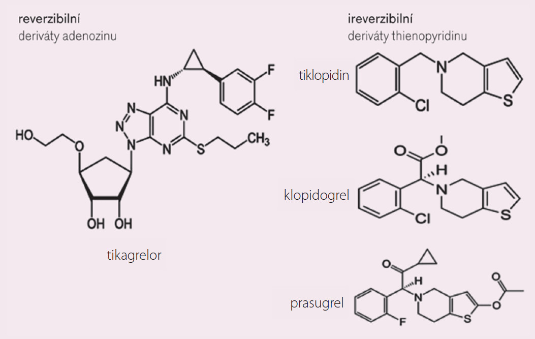 Inhibitory receptoru P2Y<sub>12</sub> pro ADP.
