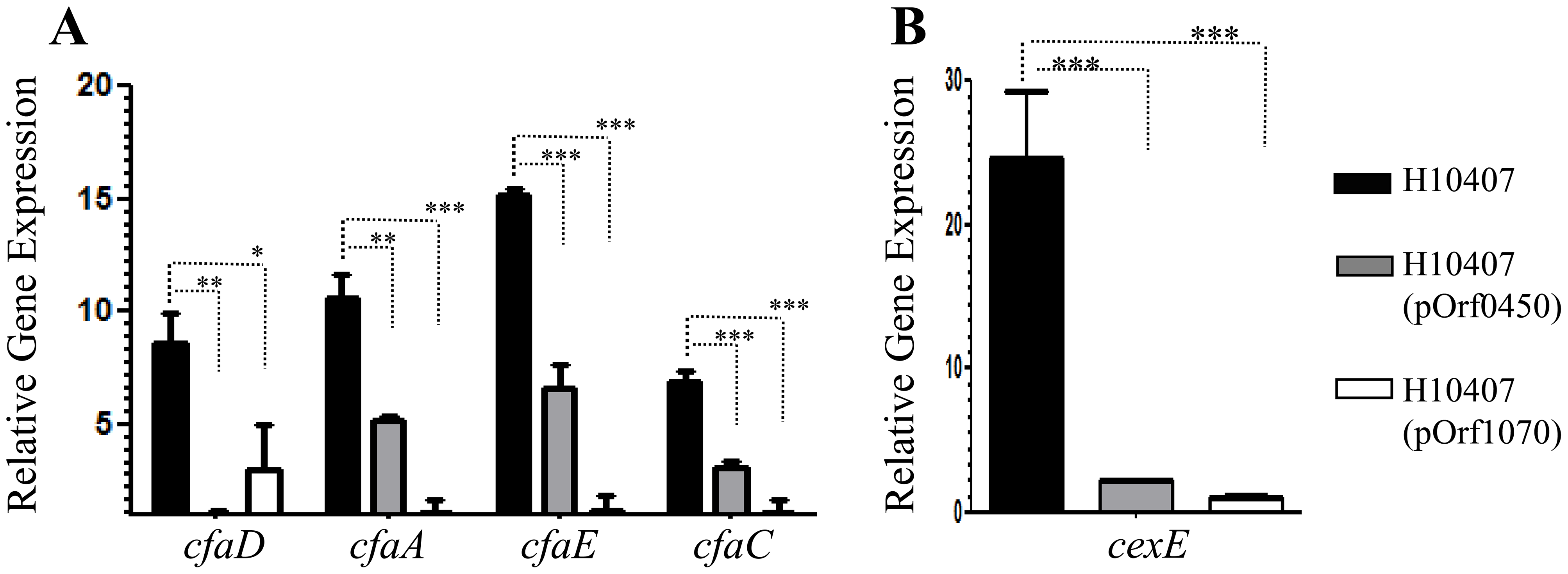 Repression of <i>cfaD/rns</i> and its regulon by ETEC-orf60 homologs.