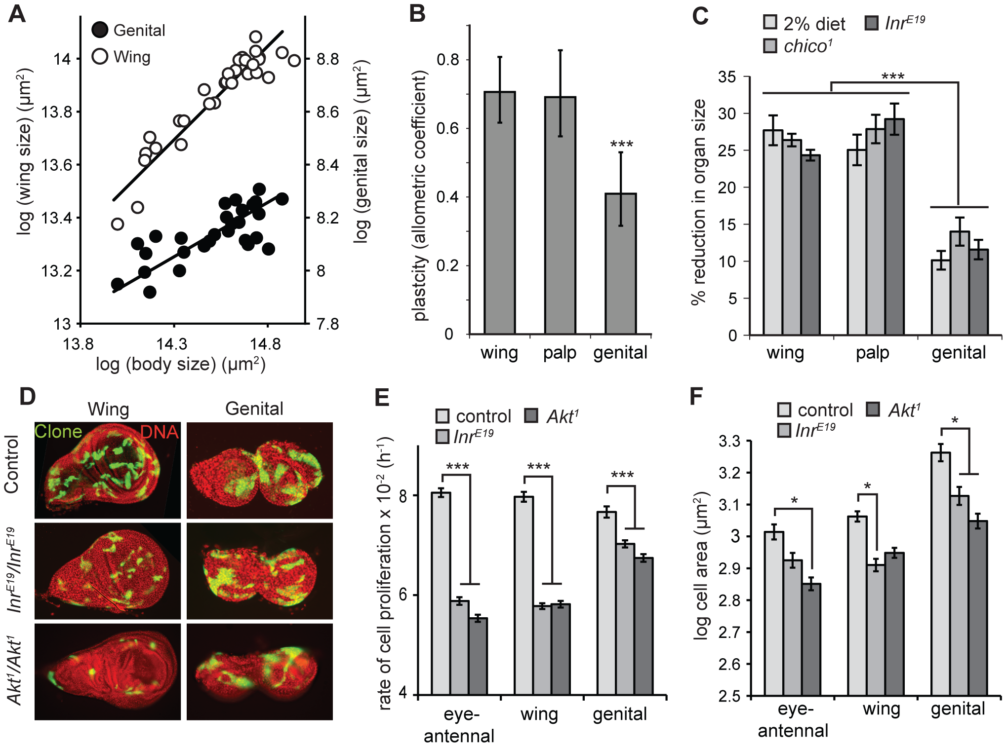 The genitalia of male <i>Drosophila</i> are nutrition- and insulin-insensitive.