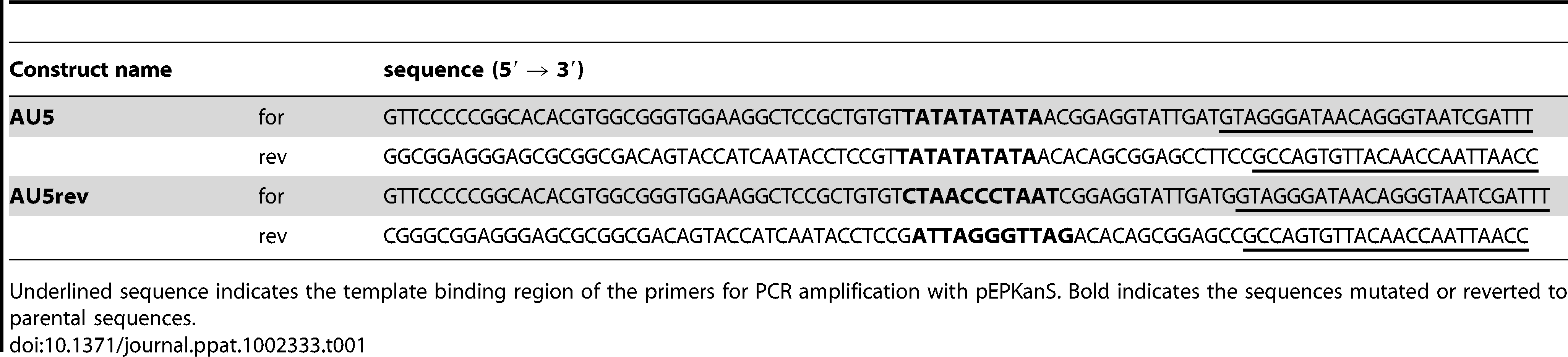 Primers used for cloning and generation of mutant and revertant AU5 constructs.