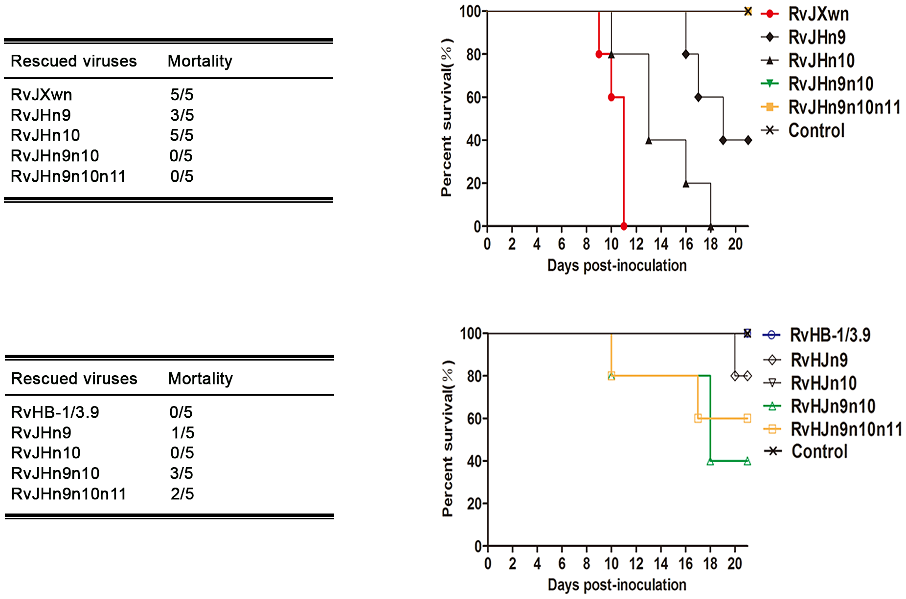 The mortality and survival curve of piglets inoculated with the rescued viruses.