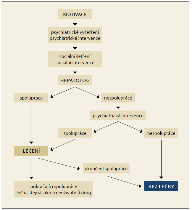 Terapeutický algoritmus pro aktivní uživatele drog. Fig. 8. Therapeutic algorithm for active drug users.