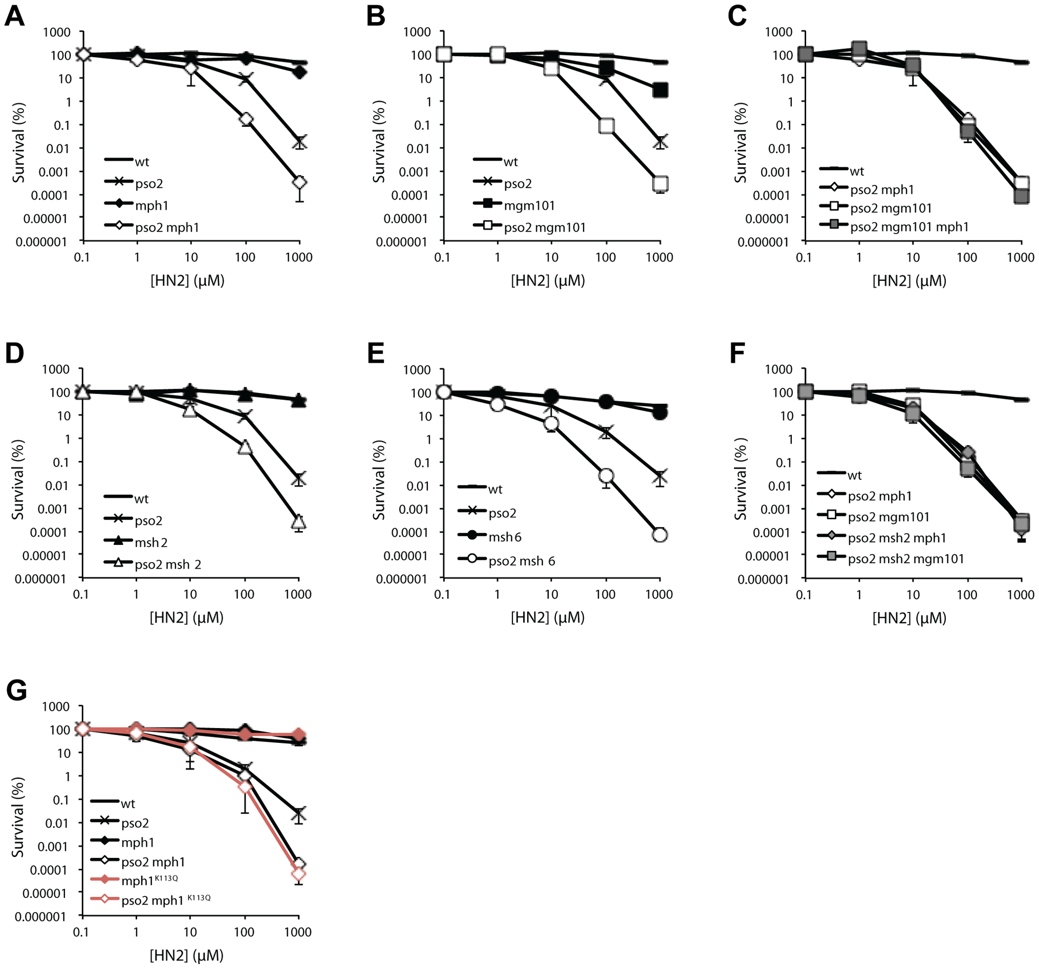 Pso2 and Mph1-Mgm101-MutSα control redundant ICL repair pathways.