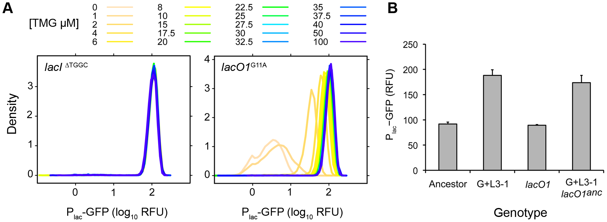 Contribution of <i>lac</i> mutations to evolved inducer responses.