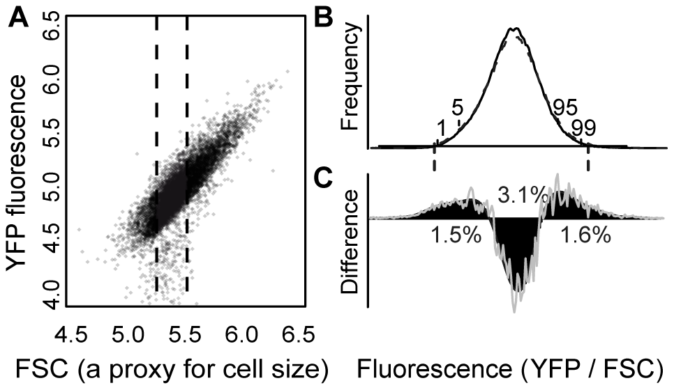 EMS treatment increased the frequency of cells with extreme YFP fluorescence.