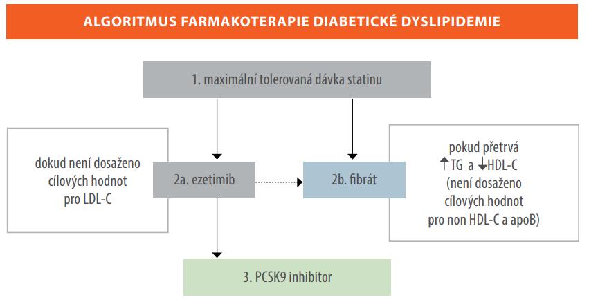 Algoritmus kombinované hypolipidemické léčby u nemocných s diabetem 2. typu (6)