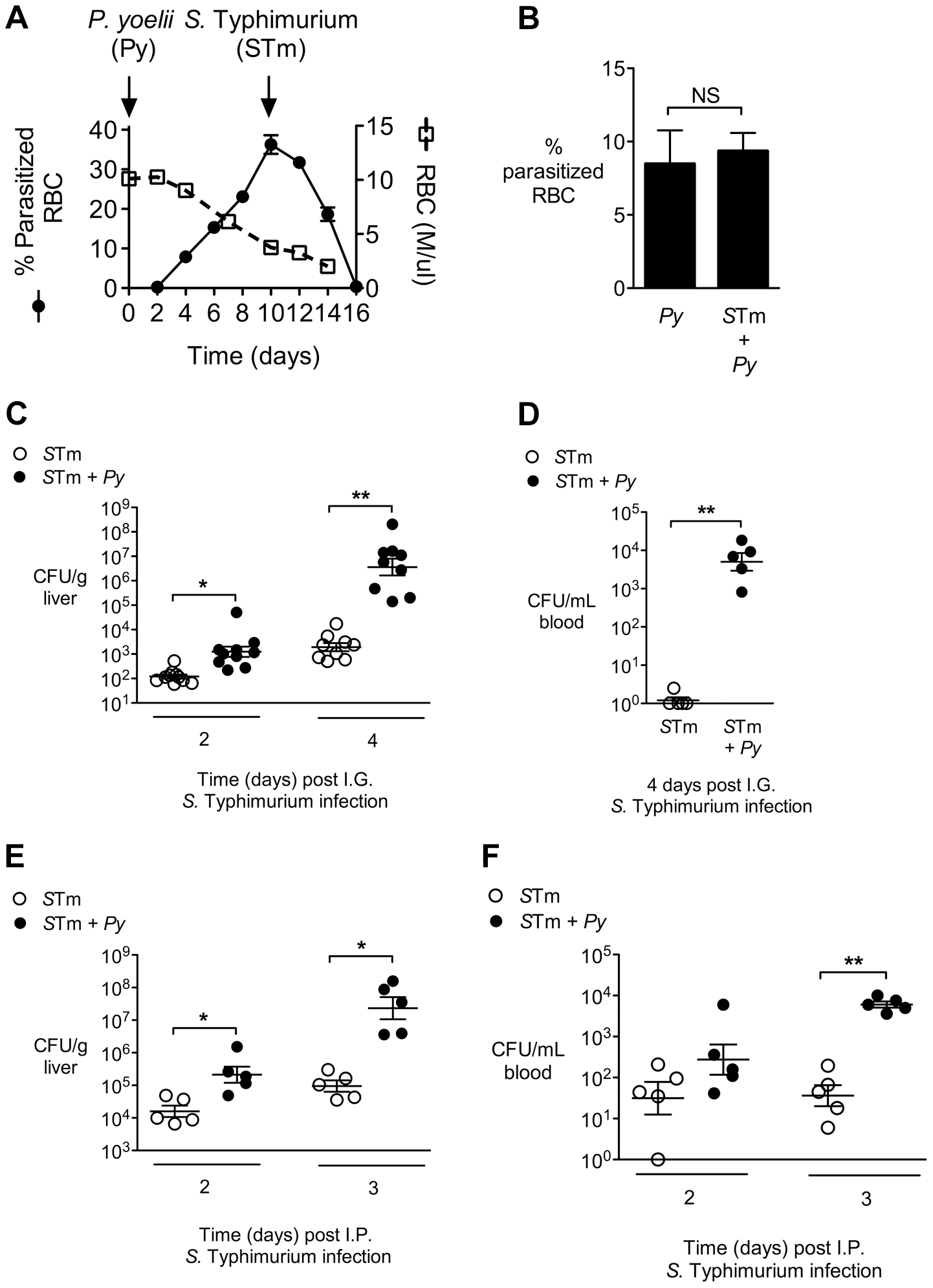Increased systemic replication of <i>S.</i> Typhimurium (<i>S</i>Tm) during concurrent <i>P. yoelii</i> (<i>Py</i>) infection.