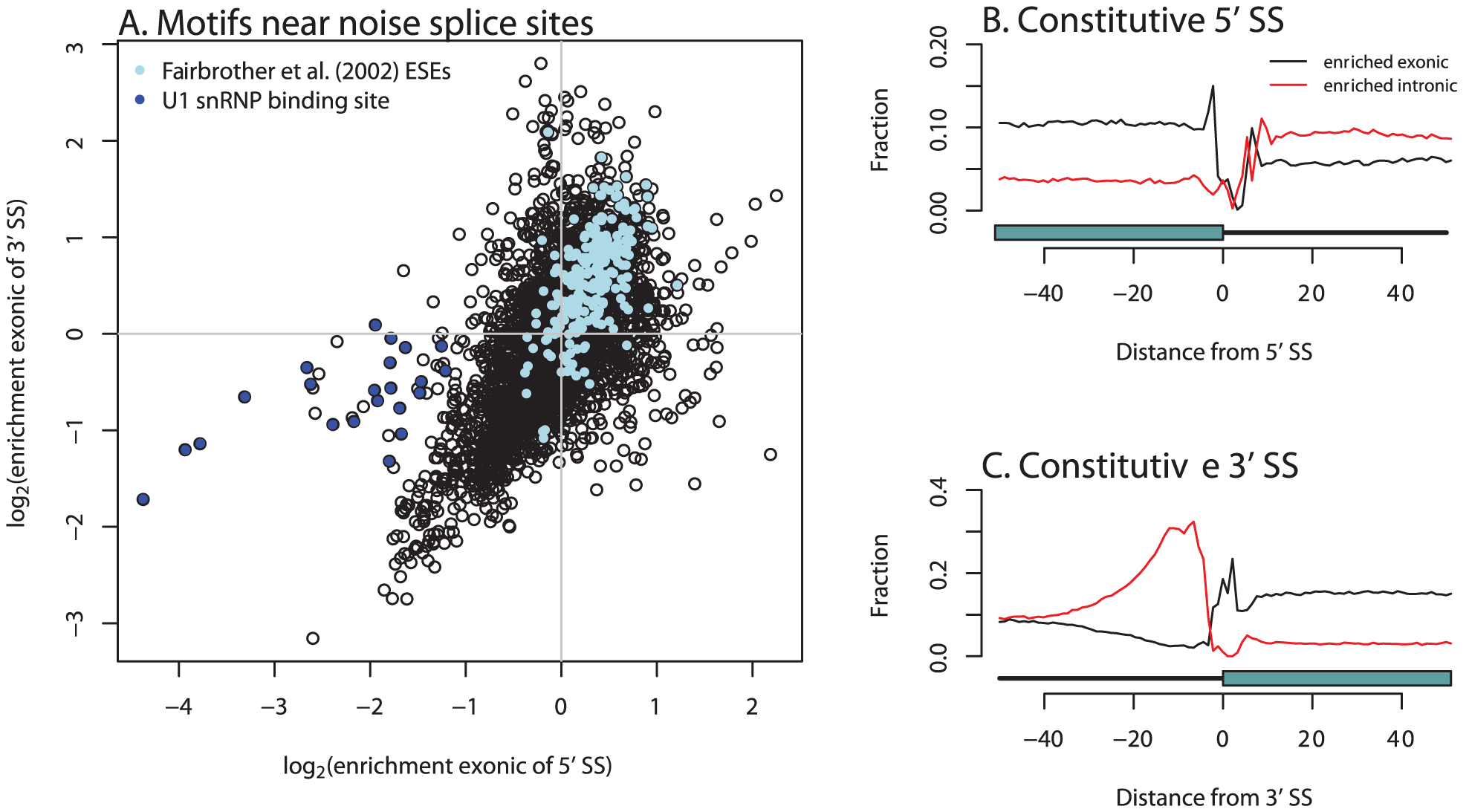 Hexamers enriched near unconserved splice sites are relevant in exon definition.