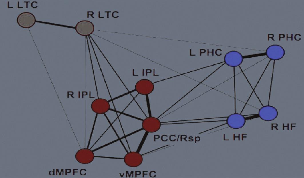 """Mohutnost propojení neboli funkční korelace jednotlivých uzlů implicitní sítě lidského mozku. Čím silnější je spojující linie, tím je vyšší míra funkční korelace. """"Jaderná"""" ohniska sítě (""""těžiště"""" neboli """"náby"""" systému (angl. hubs) jsou červeně. Legenda: L – levá strana R – pravá strana LTC –laterální temporální kůra IPL – lobulus parietalis inferior dMPFC – dorzální mediální prefrontální kůra vMPFC – ventrální mediální prefrontální kůra PCC/Rsp – zadní cingulární kůra – retrosplenická kůra PHC – parahipokampální kůra HF – hipokampální formace Dle Buckner et al. (2008; 2)"""