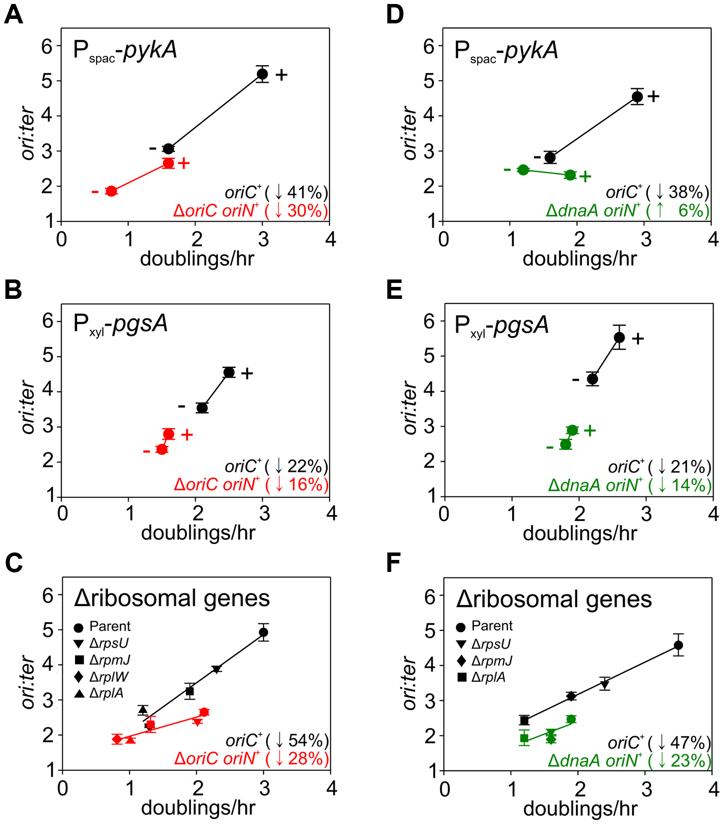 Analysis of <i>oriC</i>-independent growth rate regulation through genetic targeting of essential cellular activities.