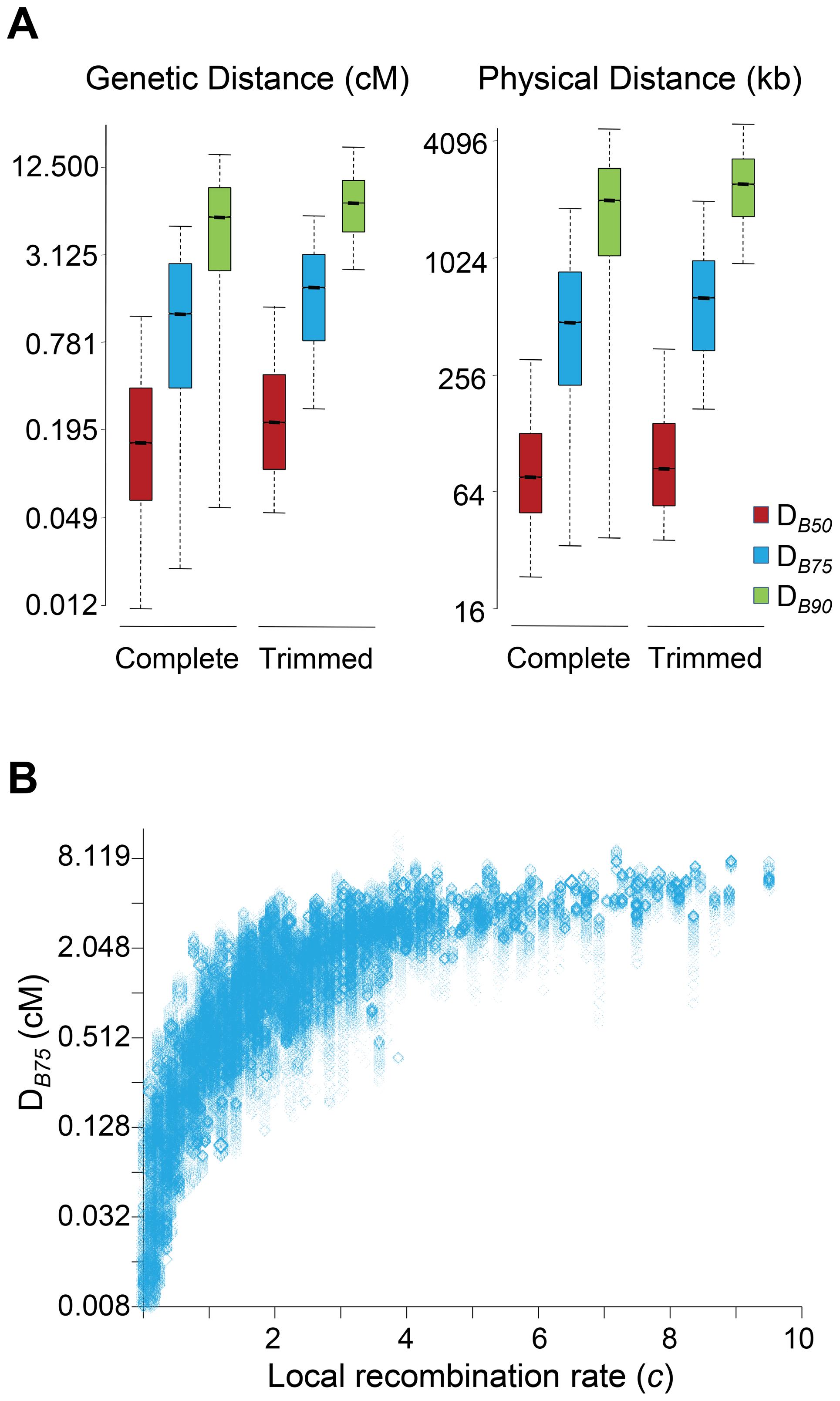 Genomic distance influencing patterns of BGS in <i>D. melanogaster</i>.