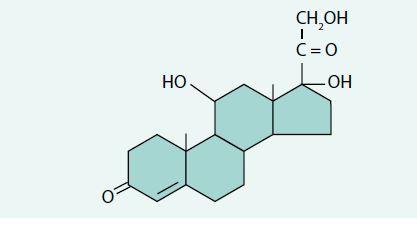 Strukturní vzorec kortizolu