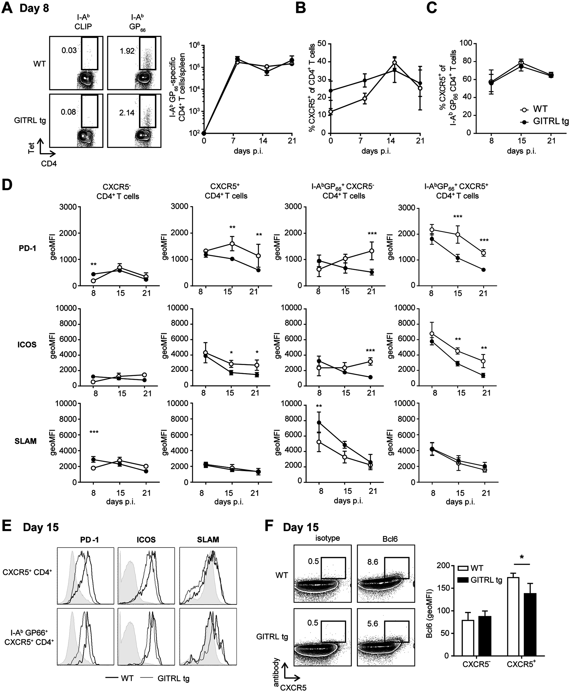 Kinetic analysis of Tfh cell responses against LCMV in GITRL tg mice.