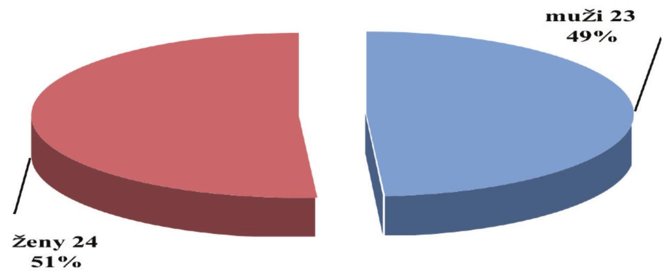 Súbor pacientov s FBSS operovaných pomocou PLIF so zadnou transpedikulárnou stabilizáciou 2005–2007 Graph 1 Group of FBSS patients operated with PLIF and posterior transpedicular stabilisation 2005–2007