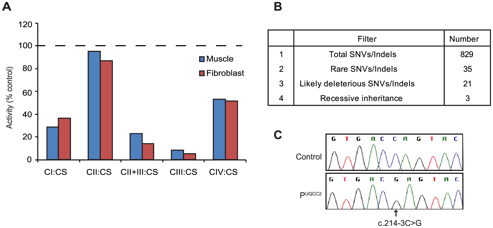 MitoExome sequencing identifies a homozygous mutation in <i>UQCC2</i> in a patient with complex III deficiency.