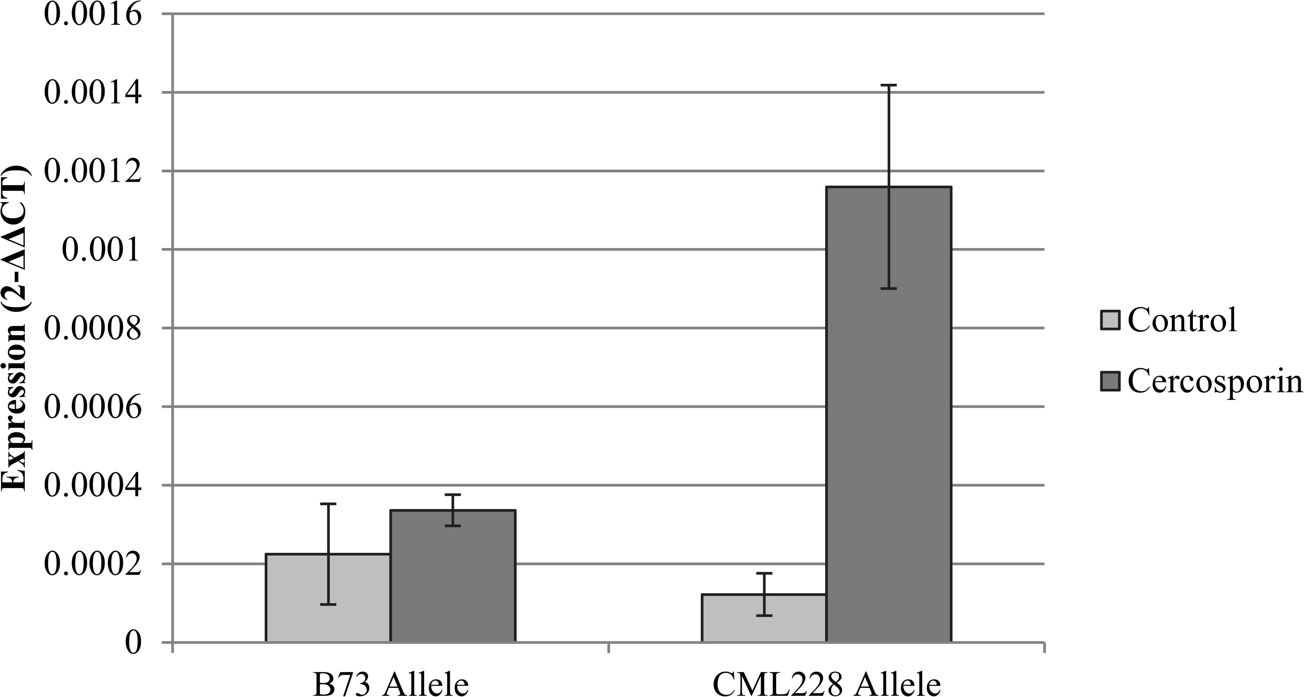 Analysis of flavin-monooxygenase expression at qGLS1.04.