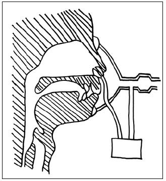 Schéma přední rinomanometrie.