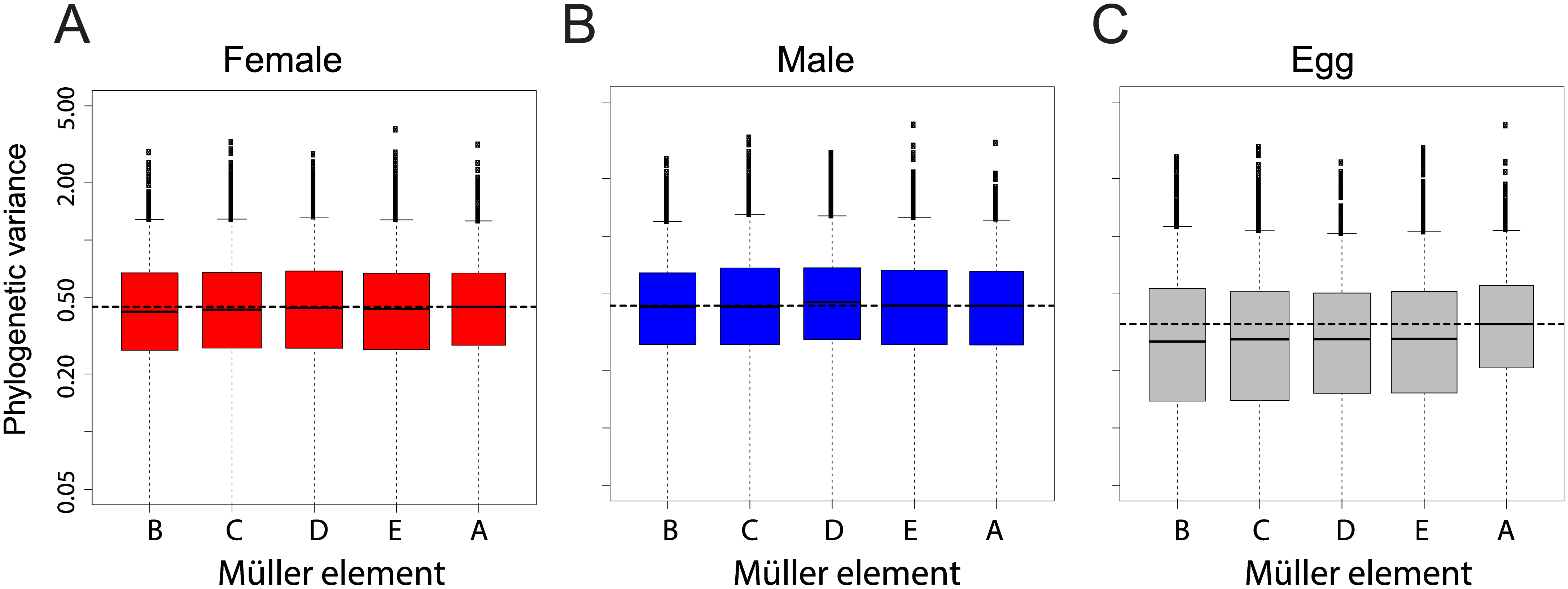 Chromosomal distribution of inter-species gene expression divergence in females (A), males (B) and eggs (C).