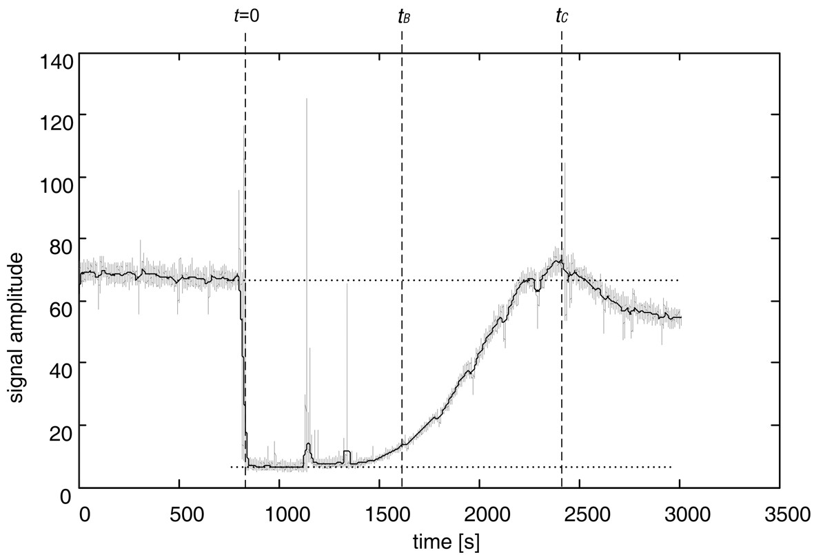 Fig. 2. The average perfusion curve obtained from laser-Doppler recording. Values tB and tC were automatically detected on the curve. tB represented a period from the time t+5 minutes (stimulus ended) till the time when the perfusion of the flap began to increase; and tC represented a period from the time t+5 minutes (stimulus ended) till the perfusion of the flap reached its maximum