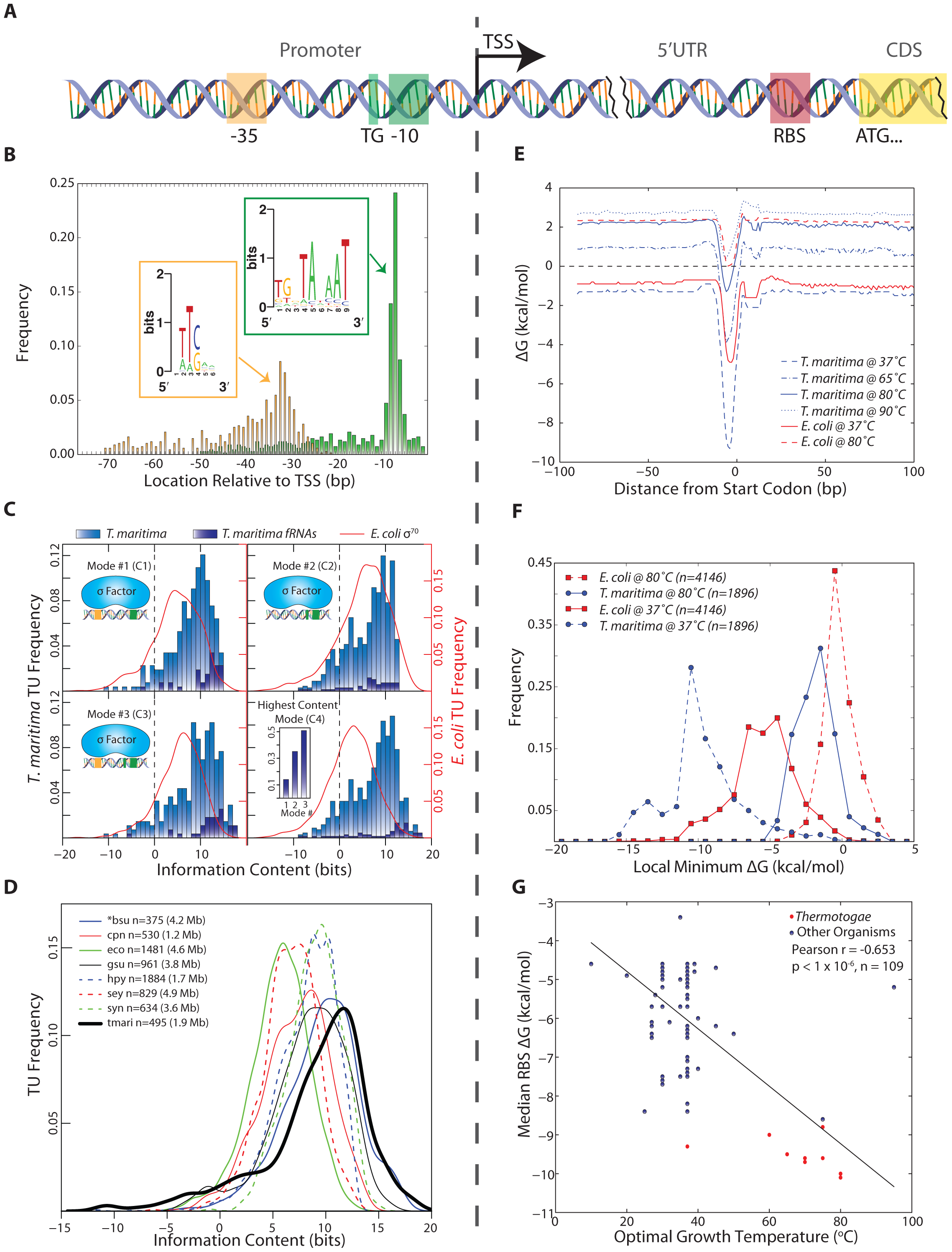 Identification and quantitative comparison of genetic elements for transcription and translation initiation.