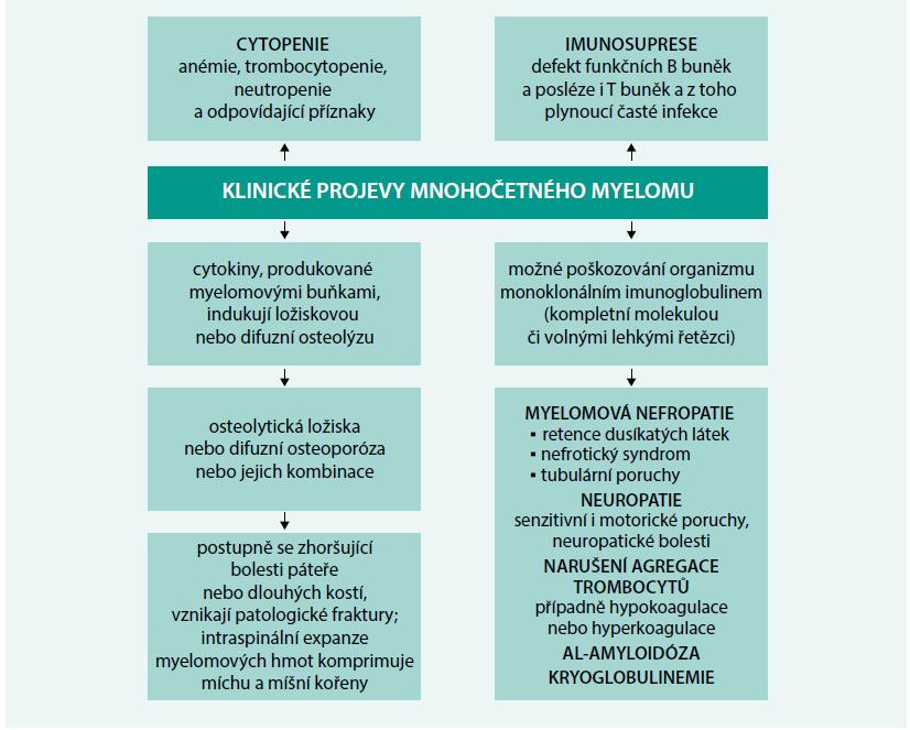 Schéma 1. Příznaky mnohočetného myelomu