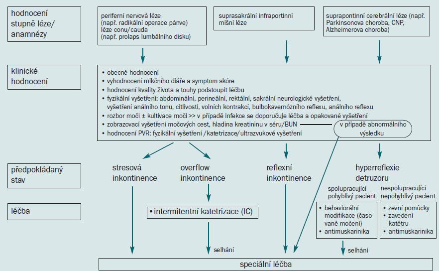 Schéma 6. Počáteční řešení neurogenní močové inkontinence.