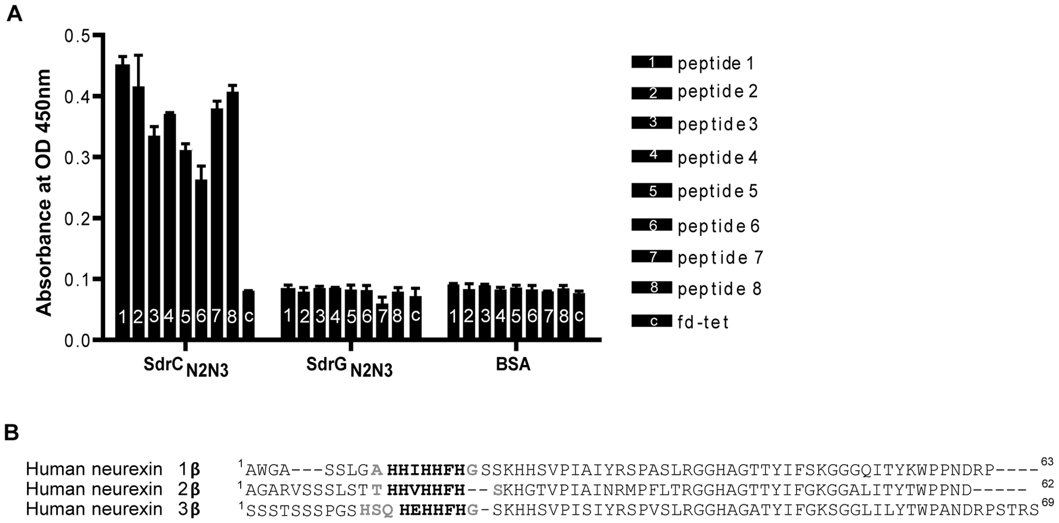 Identification of β-neurexins as the potential SdrC-binding partner.